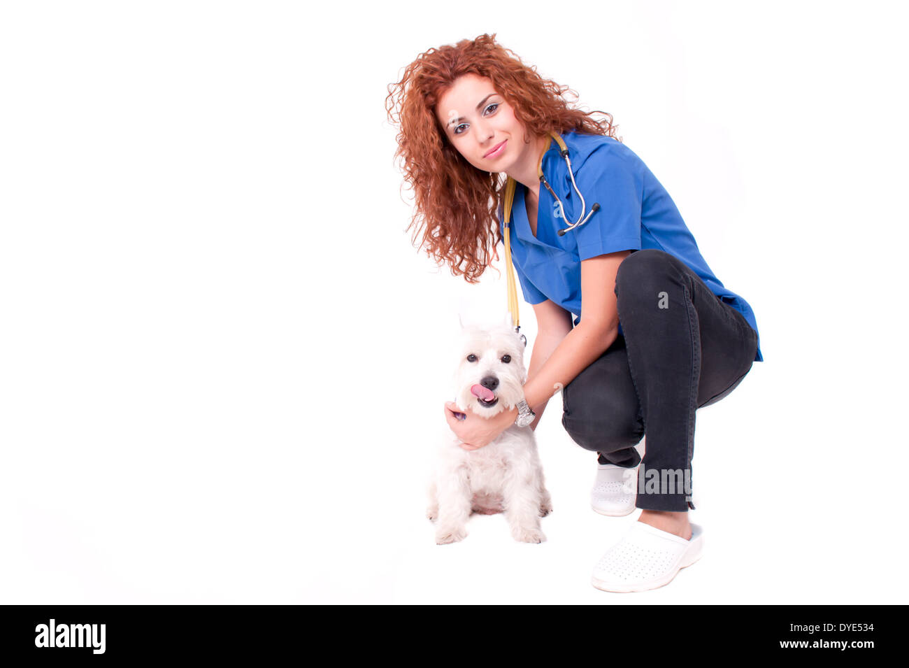 Veterinarian woman with dog - Stock Image