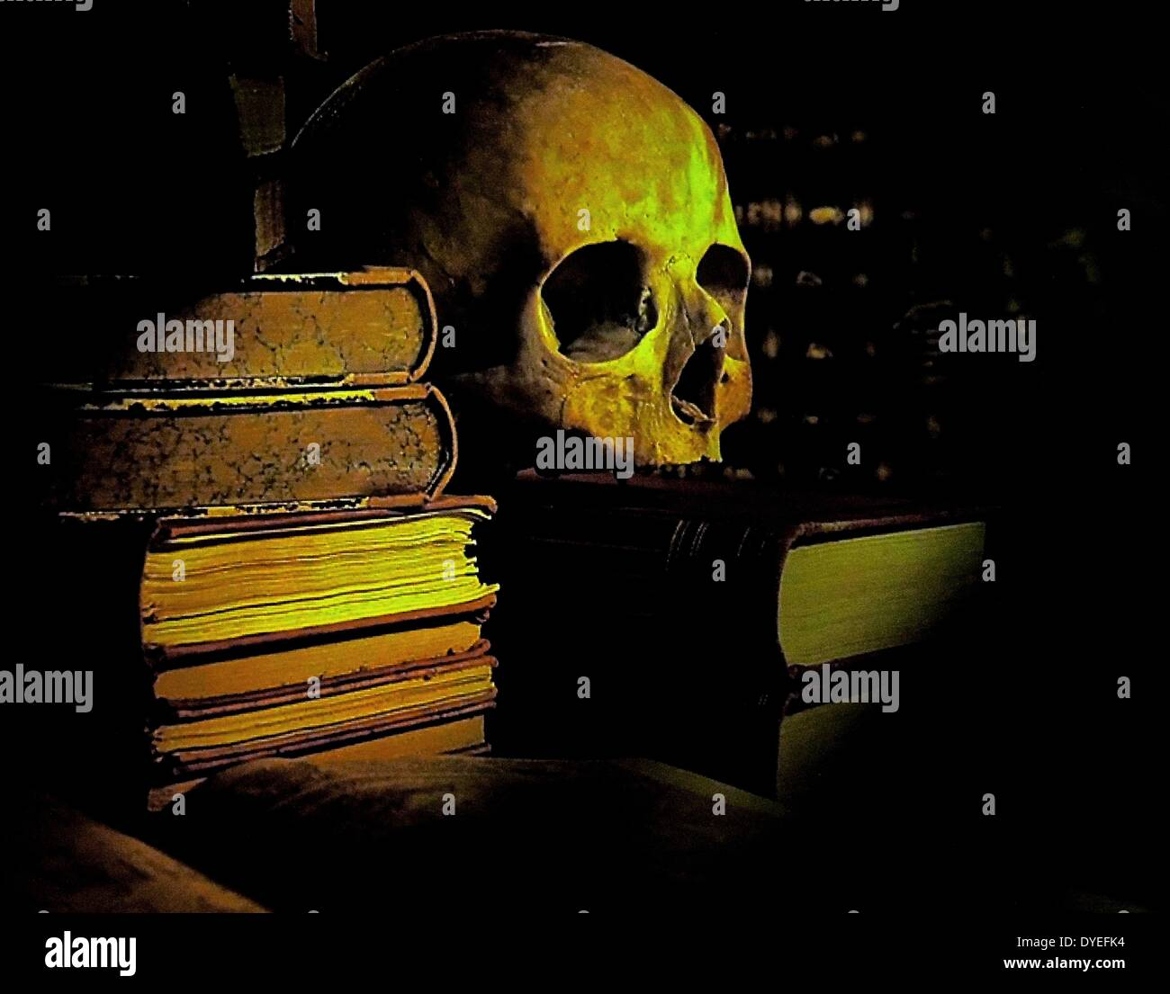 Scene Depicting a skull or Memento Mori with Books 2013 A.D. - Stock Image