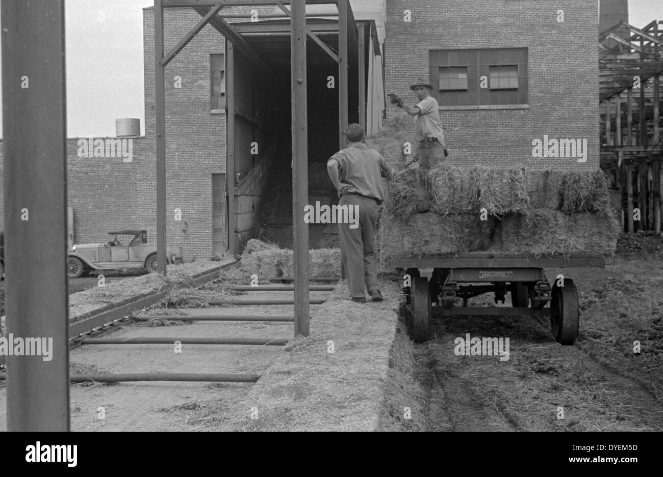 Great depression; Baled straw to be used for making strawboard at Container Corporation of America plant, - Stock Image