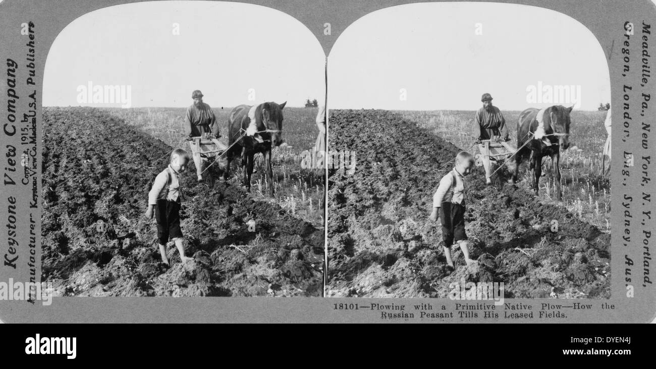 Ploughing with a primitive native plough or how. A Russian peasant tills his leased field - Stock Image