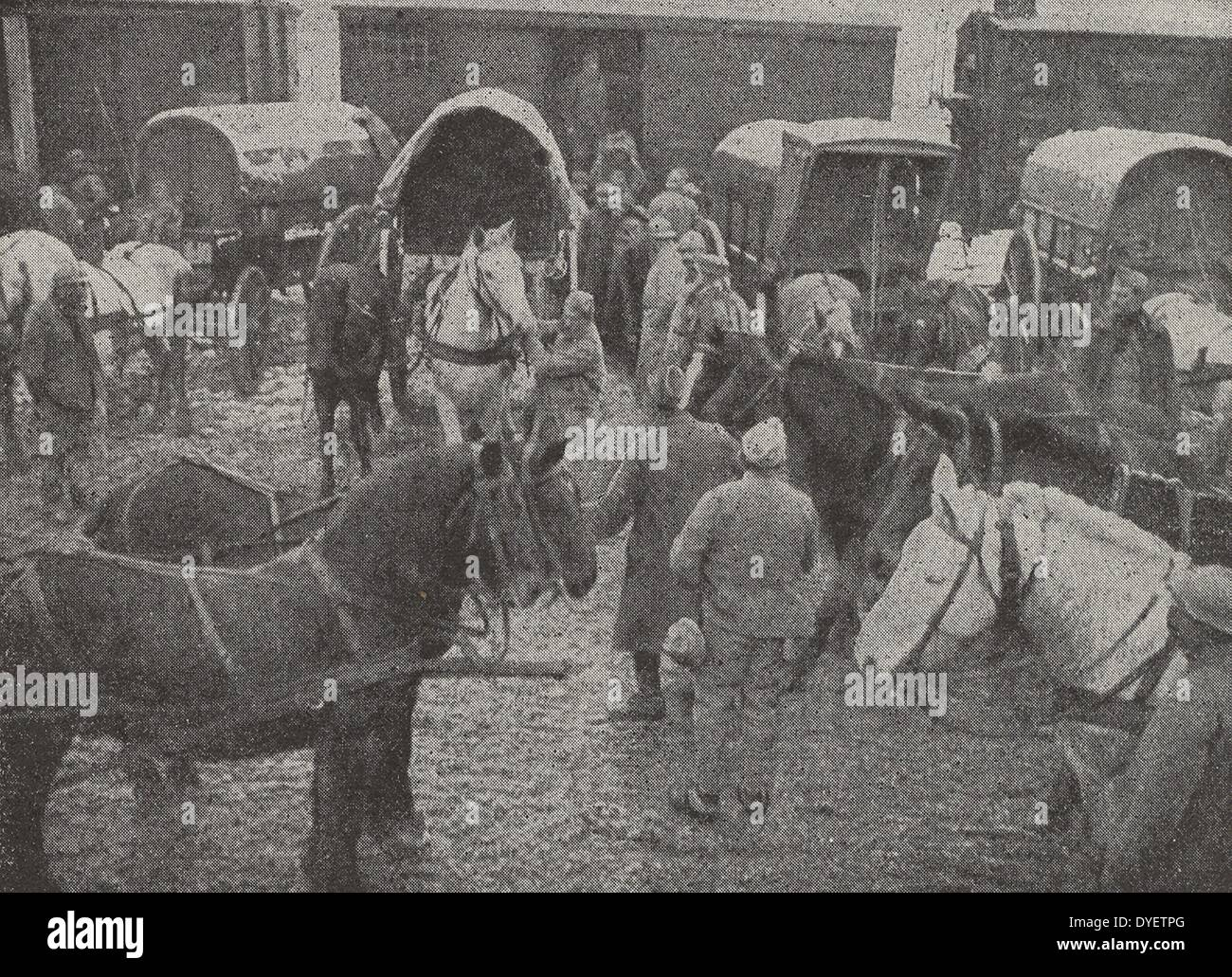 French cavalry soldiers with horses at the front line World War One 1916 - Stock Image