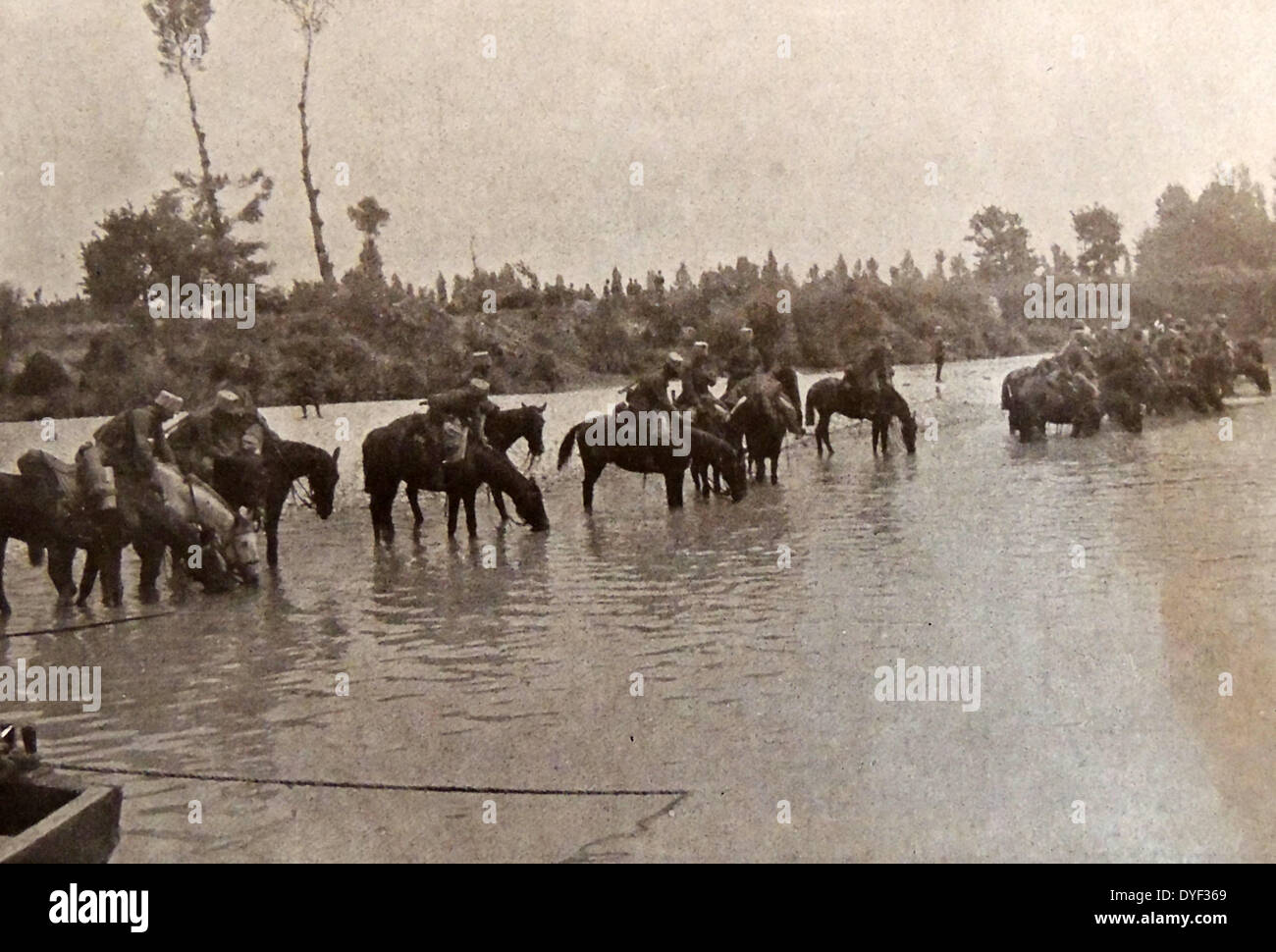 Italian cavalry take water at Isonzo. - Stock Image