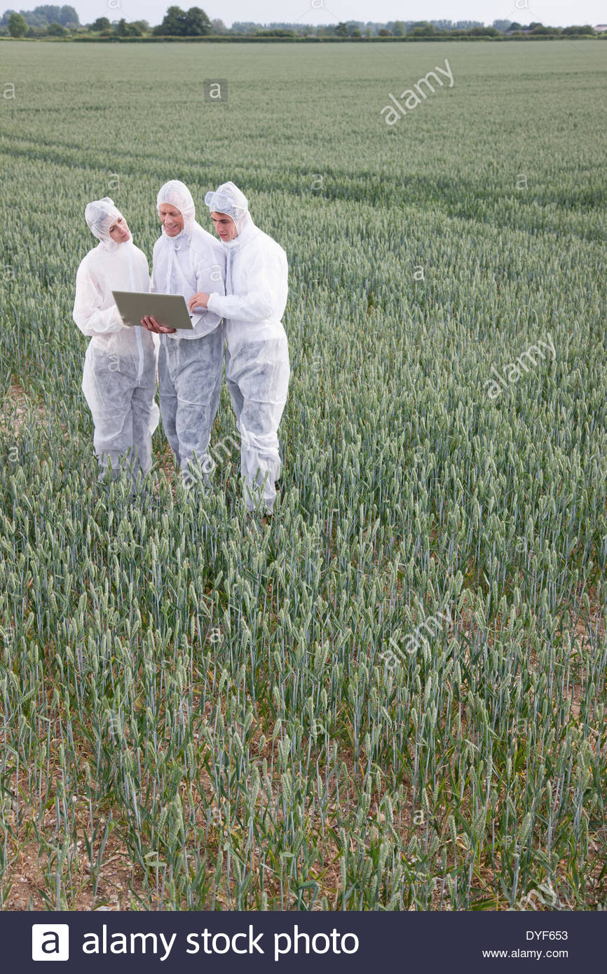 Scientists in protective gear using laptop in field - Stock Image