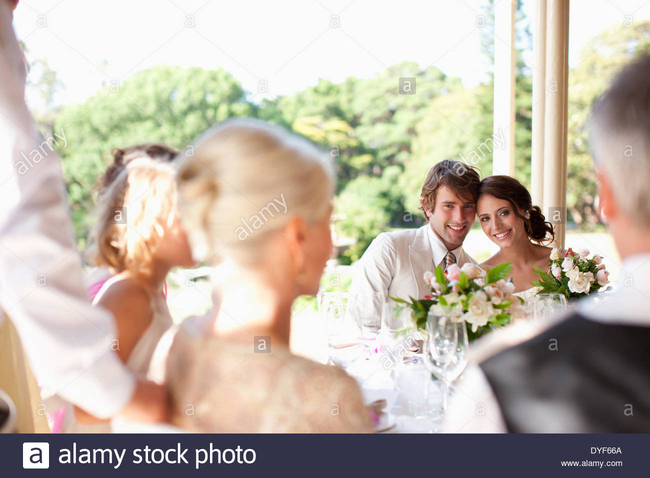 Family celebrating at wedding reception - Stock Image