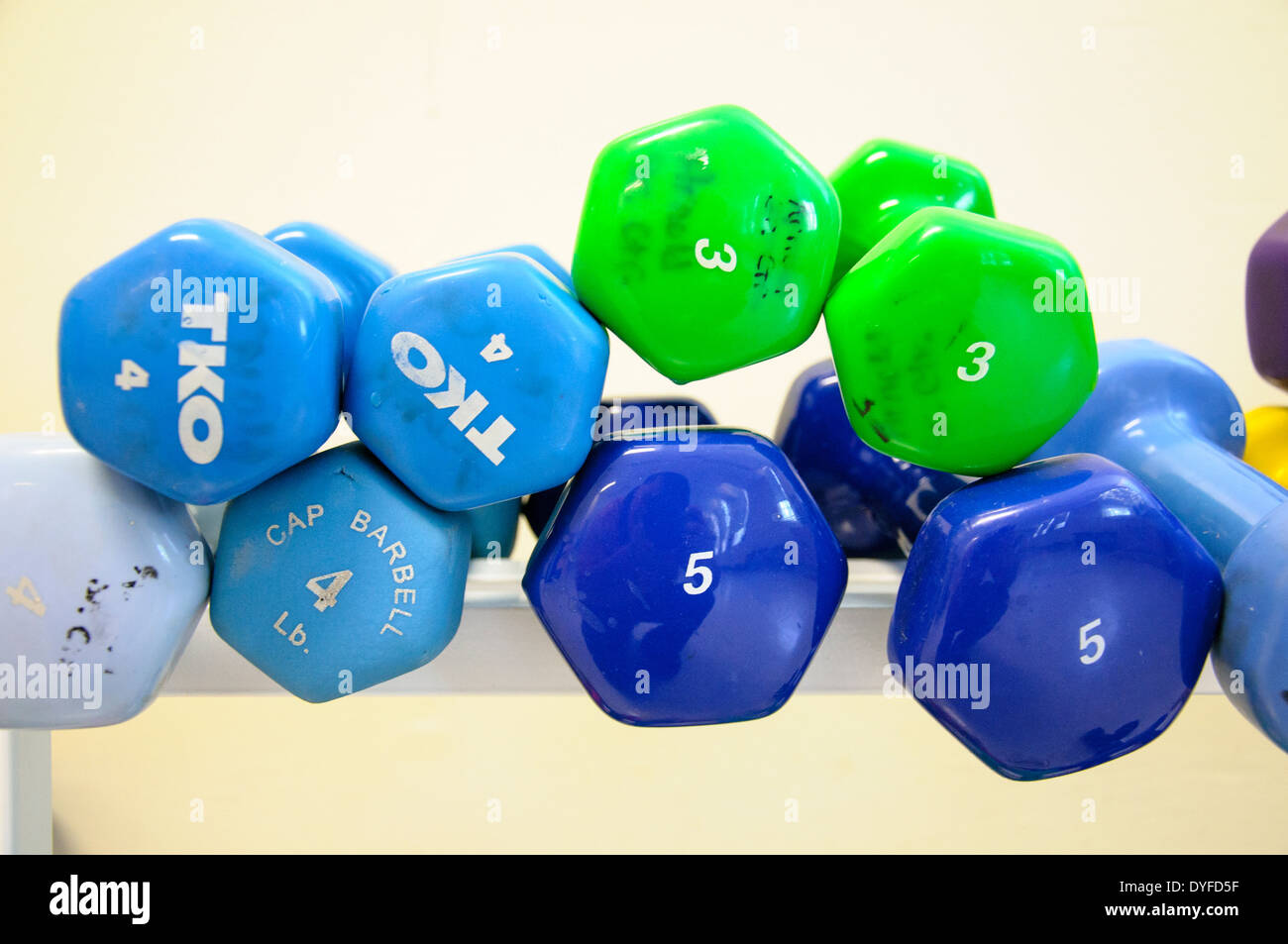 Assorted weights, exercise equipment. - Stock Image