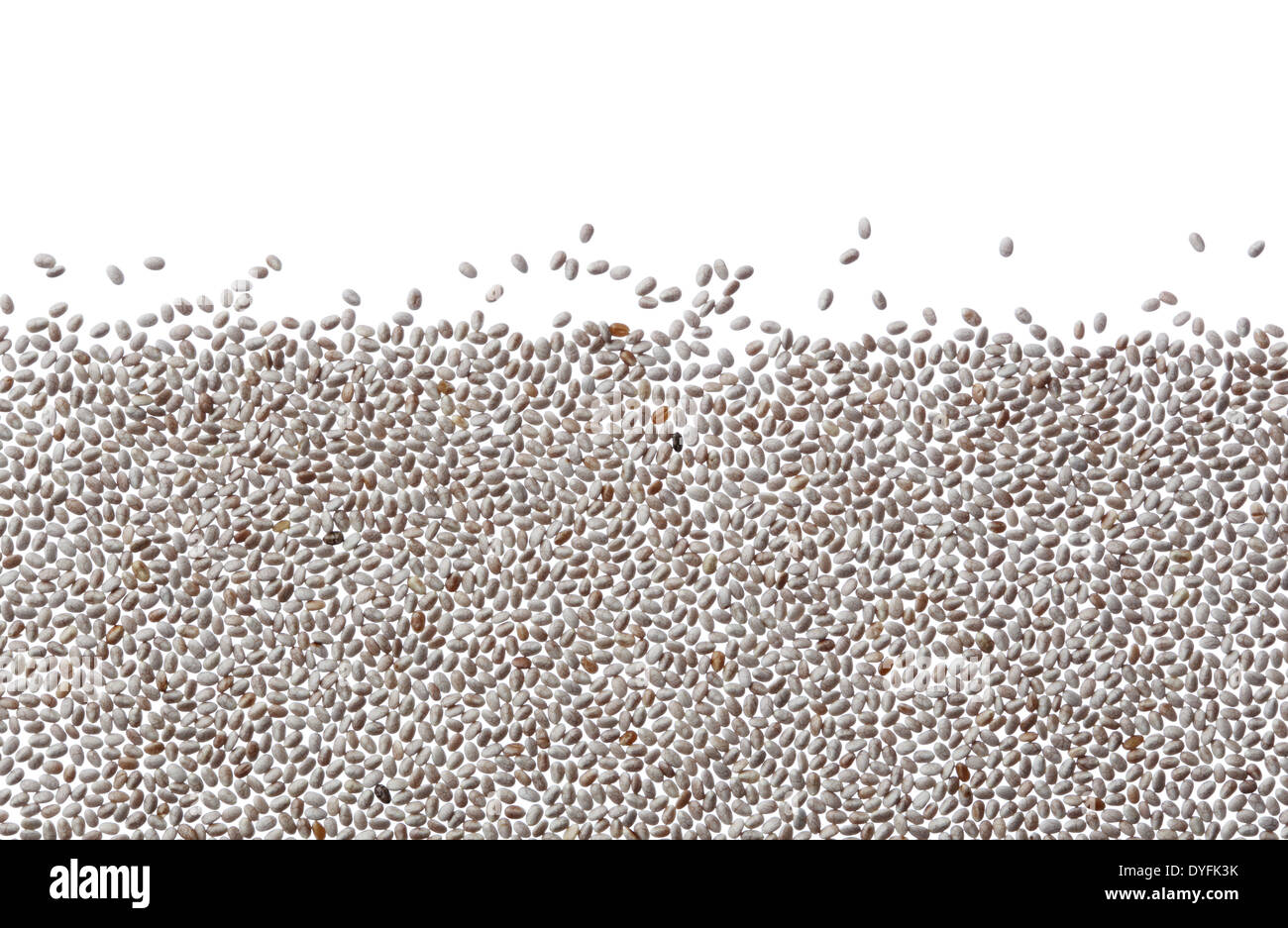 White chia seeds against white background - Stock Image