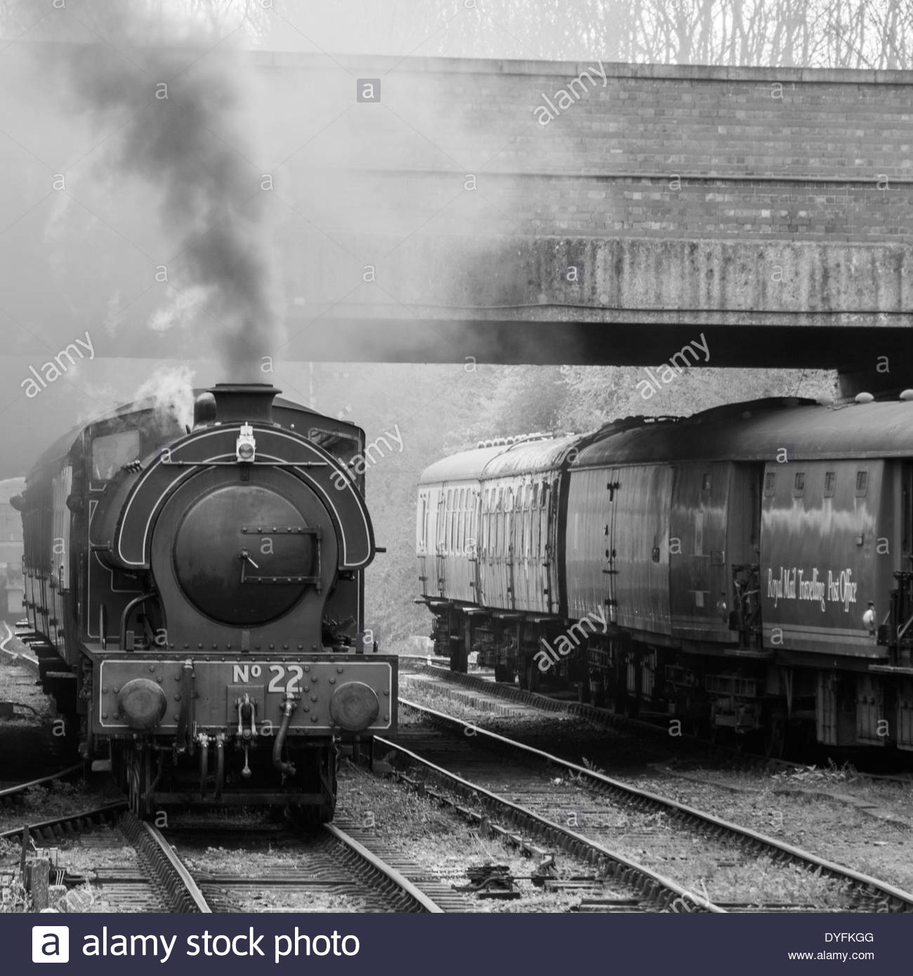 Saddle tank steam engine at the Nene Valley Railway (black and white) - Stock Image