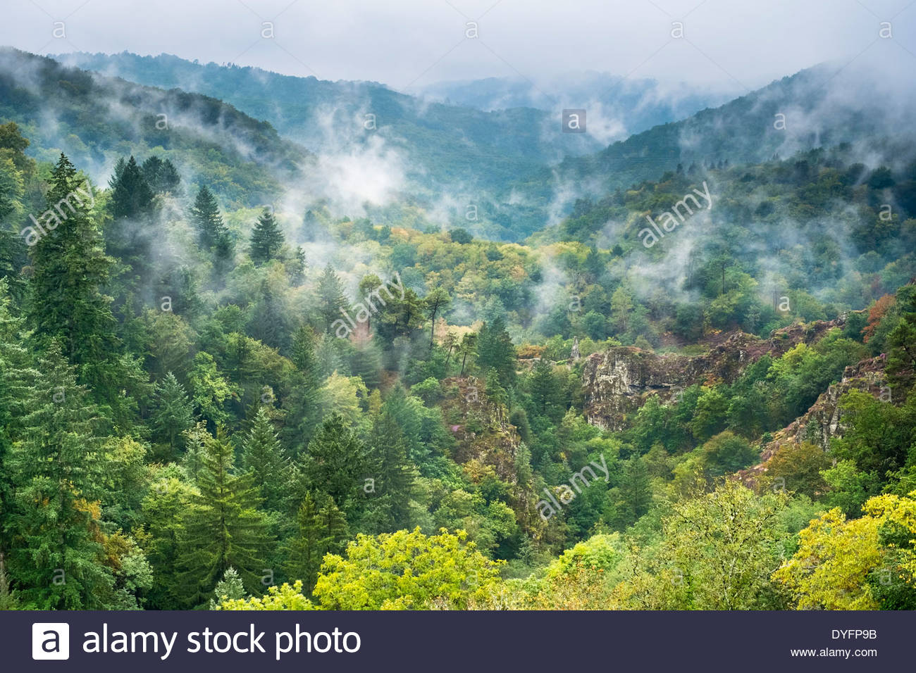 Fog over the Gorge de la Montane, Gimel-les-Cascades, Corrèze département, Limousin, France - Stock Image