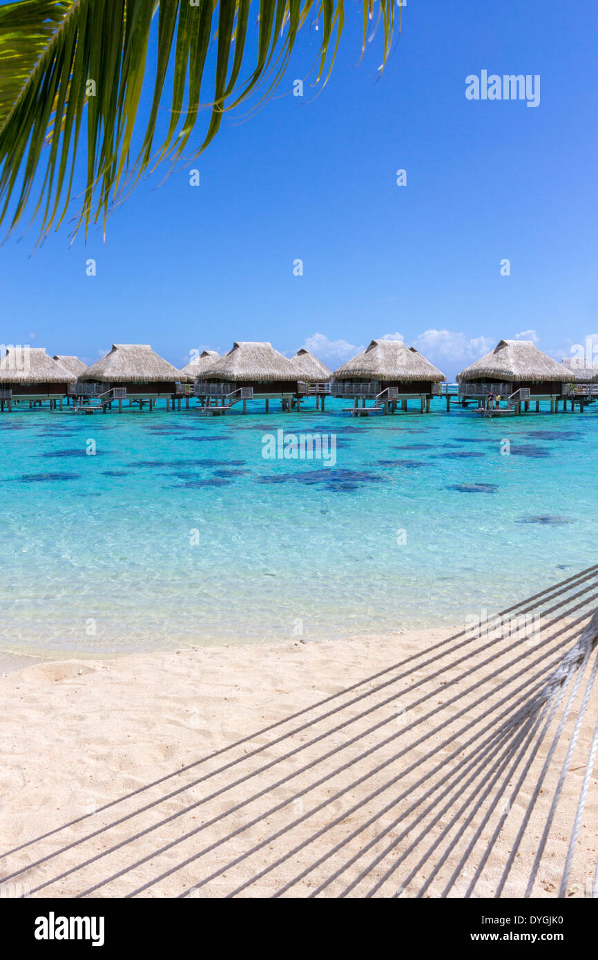 Rope hammock and palm tree branch on a beach with overwater bungalows by the turquoise waters of Moorea in French Polynesia - Stock Image