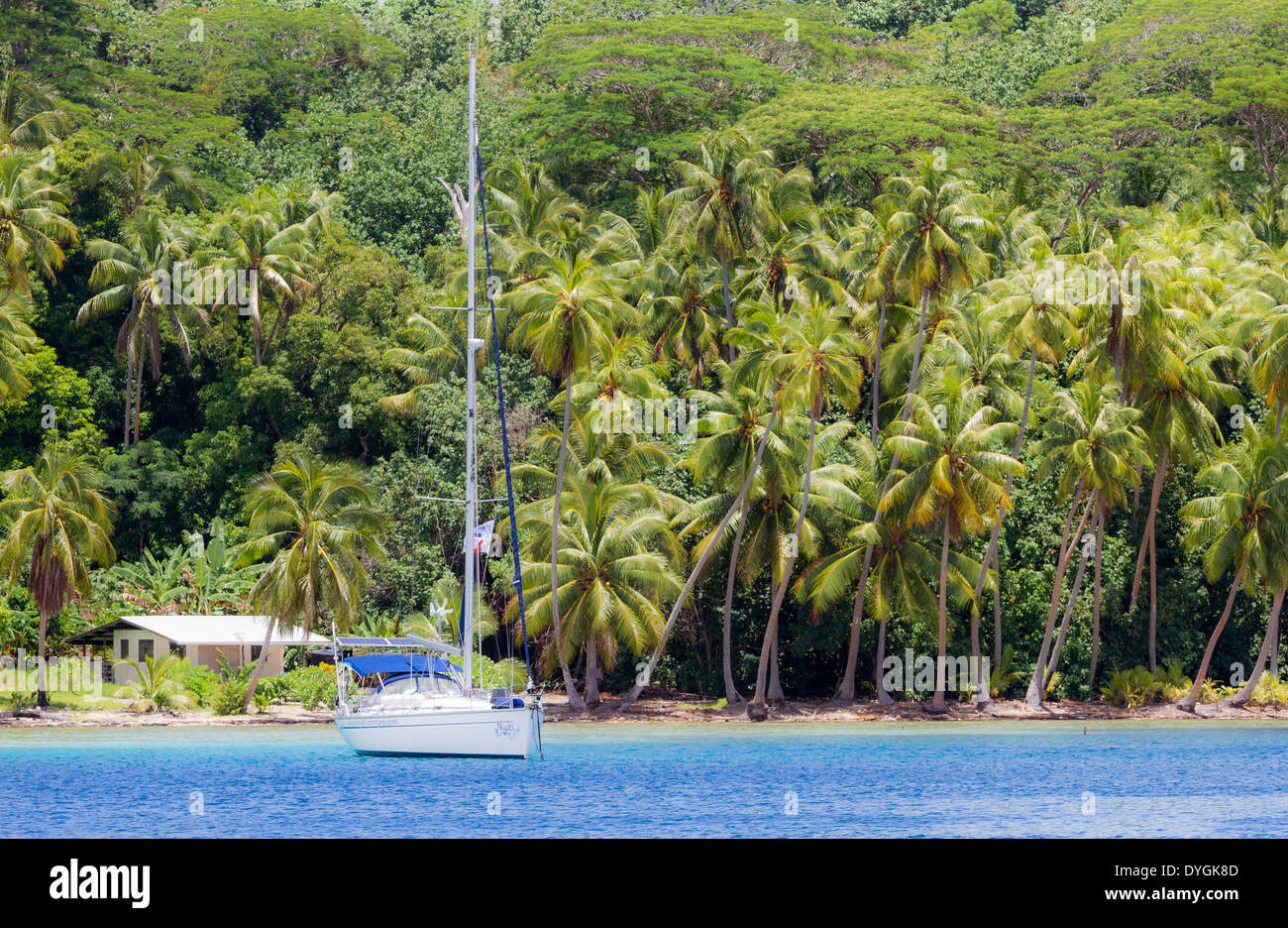 Tropical scene of sailboat anchored in front of palm trees and house in French Polynesia - Stock Image