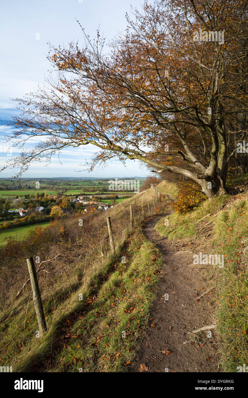 A narrow, winding path on the chalkland escarpment of Sharenhoe Clappers, part of the John Bunyan Trail in the Chiltern Hills, Bedfordshire, England - Stock Image