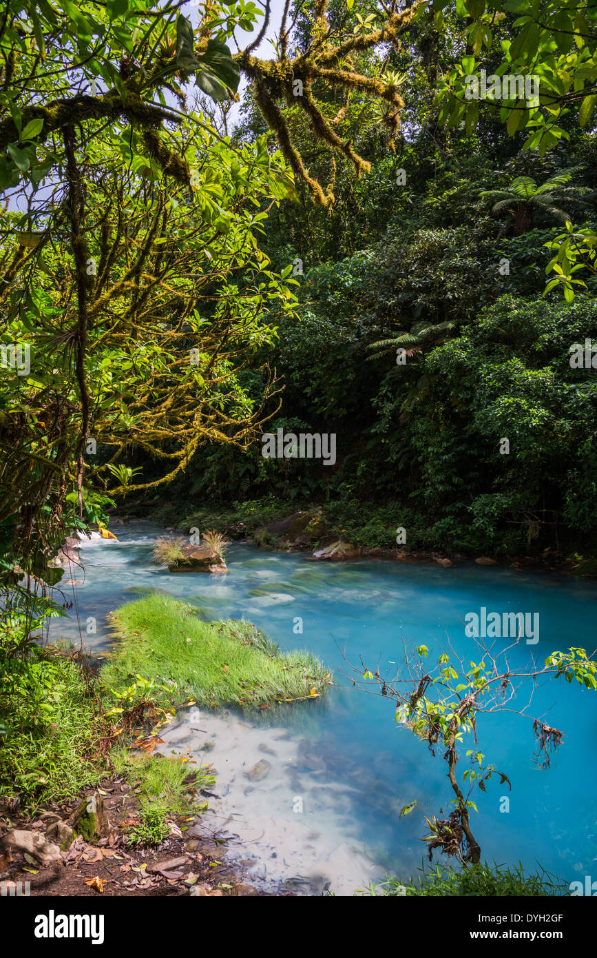 Signature turquoise blue water in the Rio Celeste flows through forest, Tenorio Volcano National Park, Costa Rica. Stock Photo