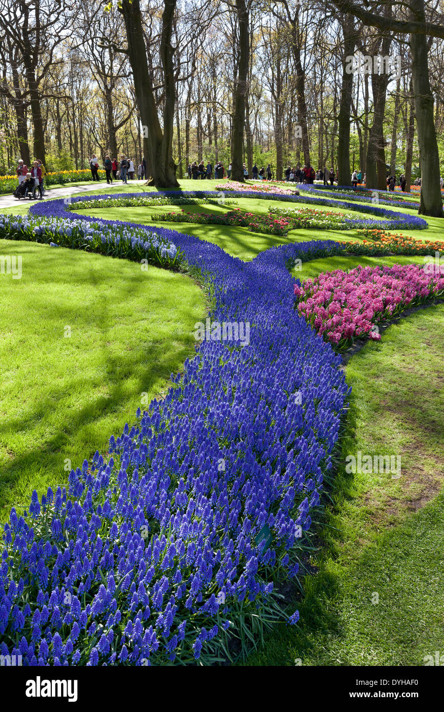 Flowers, and tourists in the Keukenhof in Lisse, Holland - Stock Image