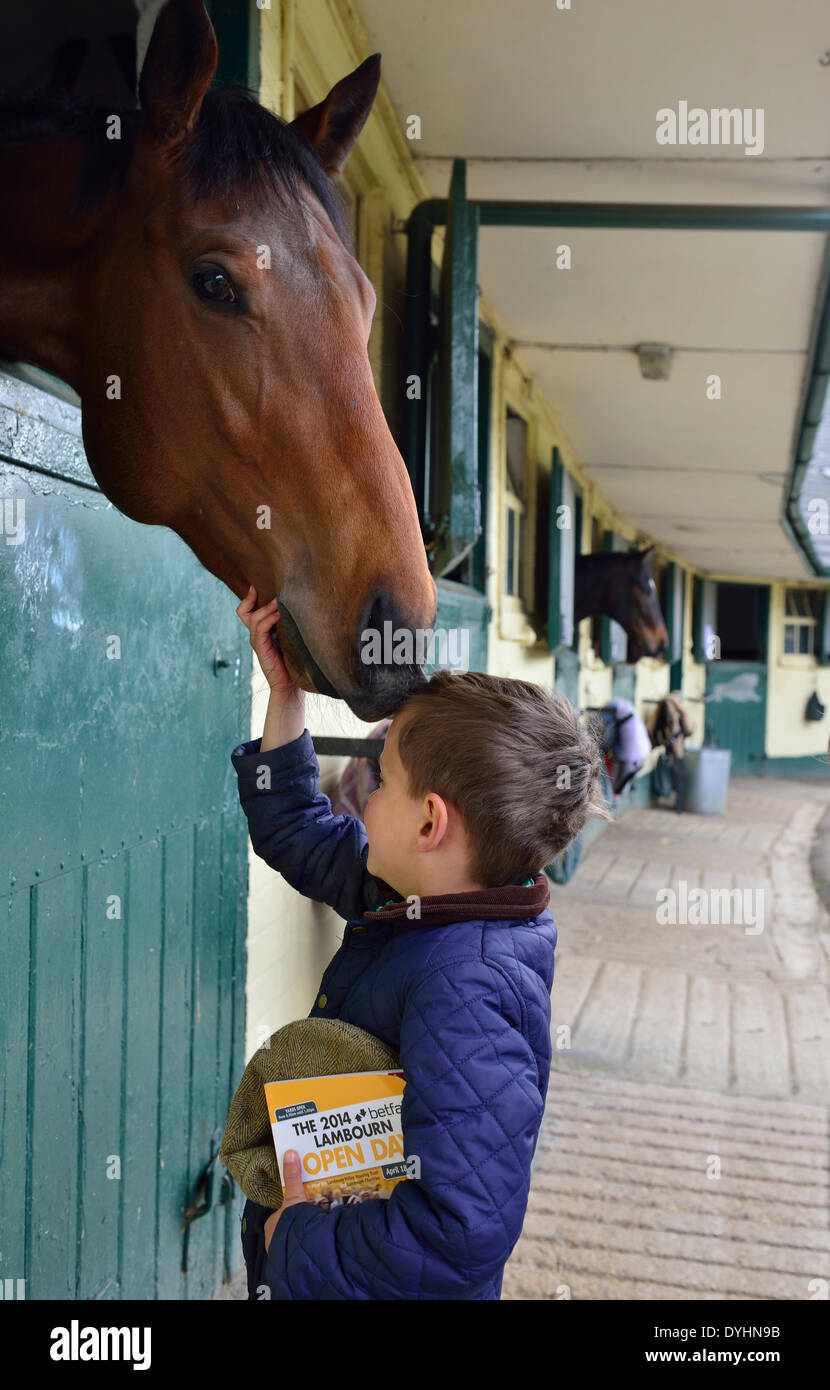 Lambourn Open Day. The open day's unique opportunity to see the horses in the training establishments throughout the Lambourn Valley. More than 30 trainers opened their yards to the public and over 10,000 people  expected to take the opportunity to meet the horses, the trainers and to really see first hand the Lambourn racing industry.Credit Gary Blake /Alamy Live News - Stock Image