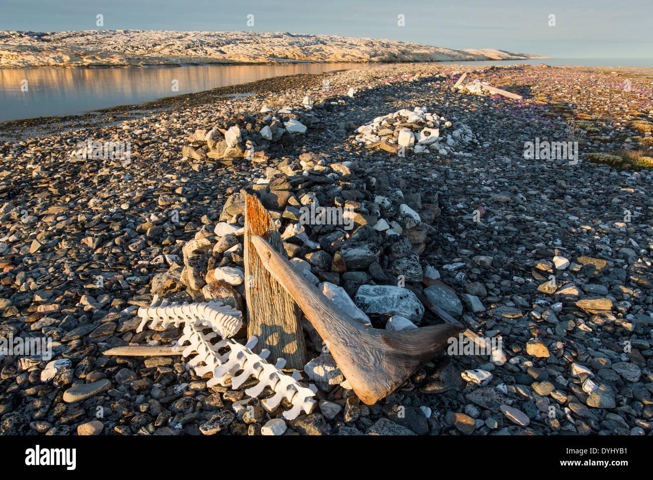 Canada, Nunavut Territory, Whaler's graves on Deadman Island along Hudson Bay - Stock Image