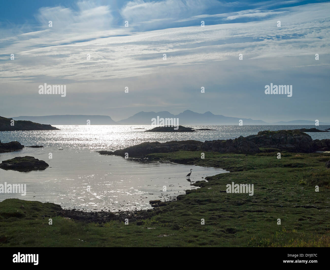 rum and eigg from arisaig shore lochaber with lone heron - Stock Image
