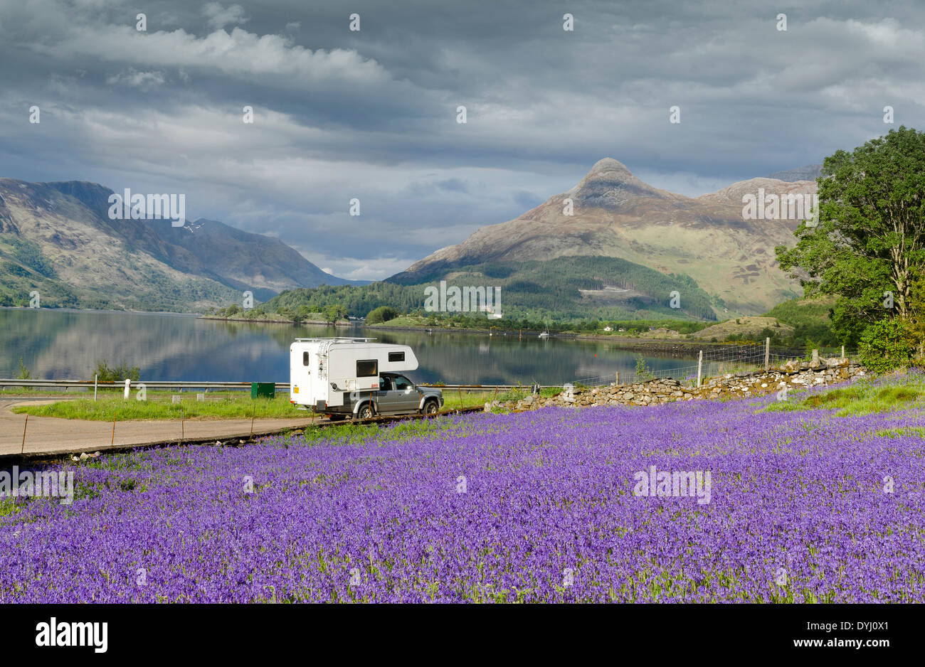 camper van at ballachulish and field of bluebells - Stock Image