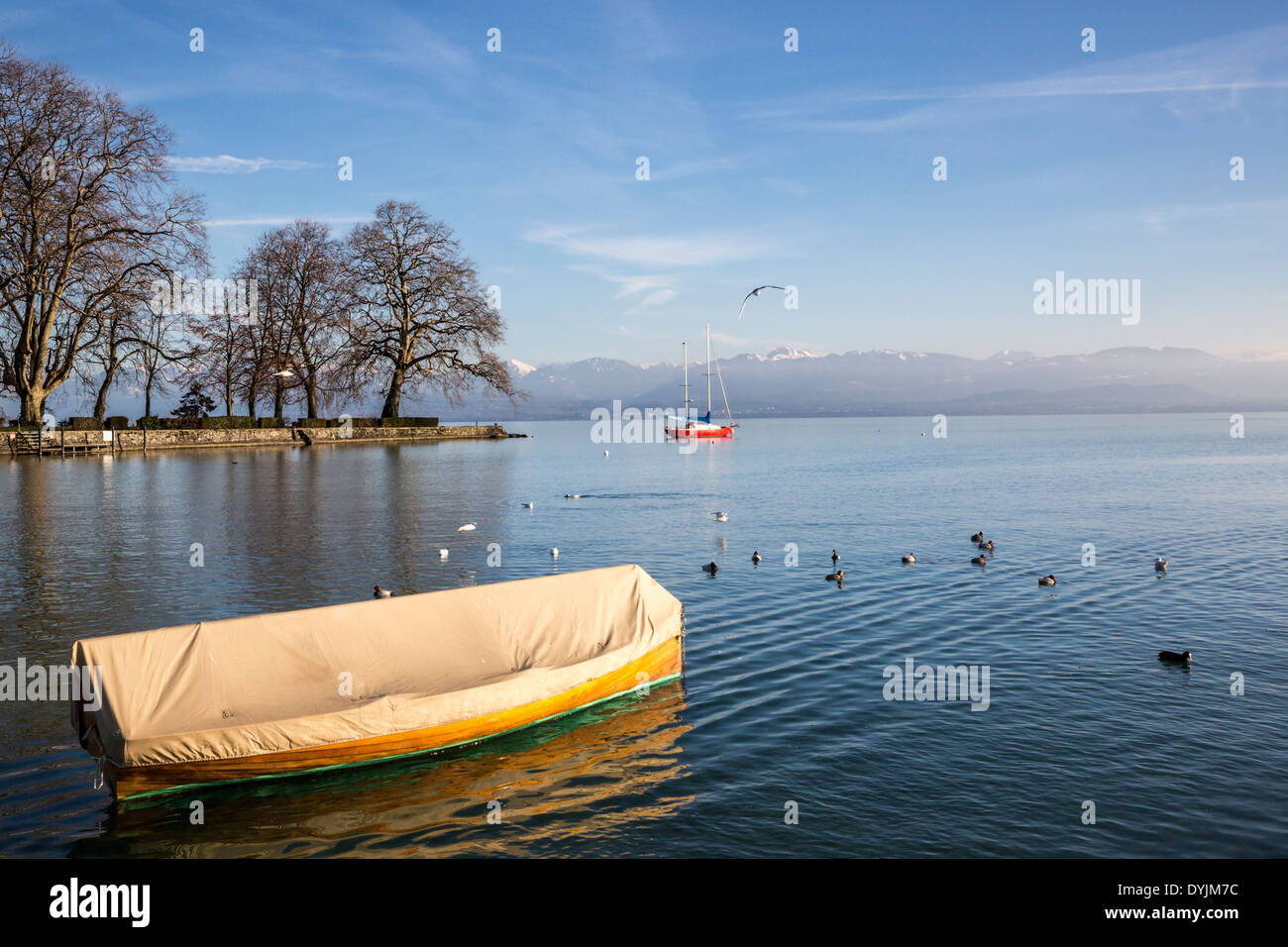 Two boats and ducks on Lake Geneva (Lac Léman) near Rolle Switzerland with a small island and the French Alps in the background. - Stock Image