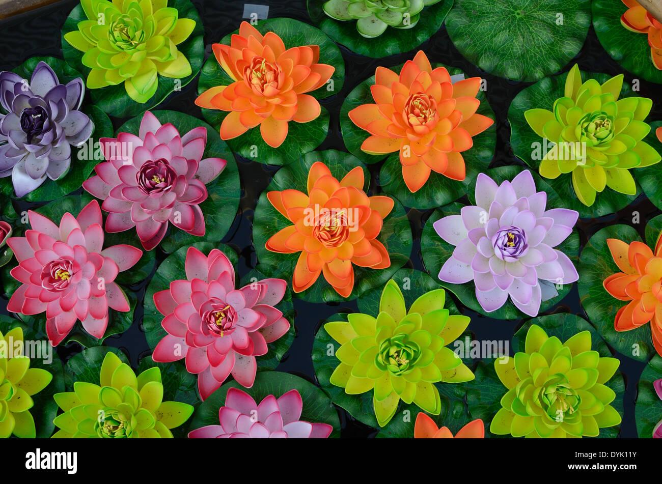 Multicolored Plastic Lotus Flowers Or Blooms Of Floating Water