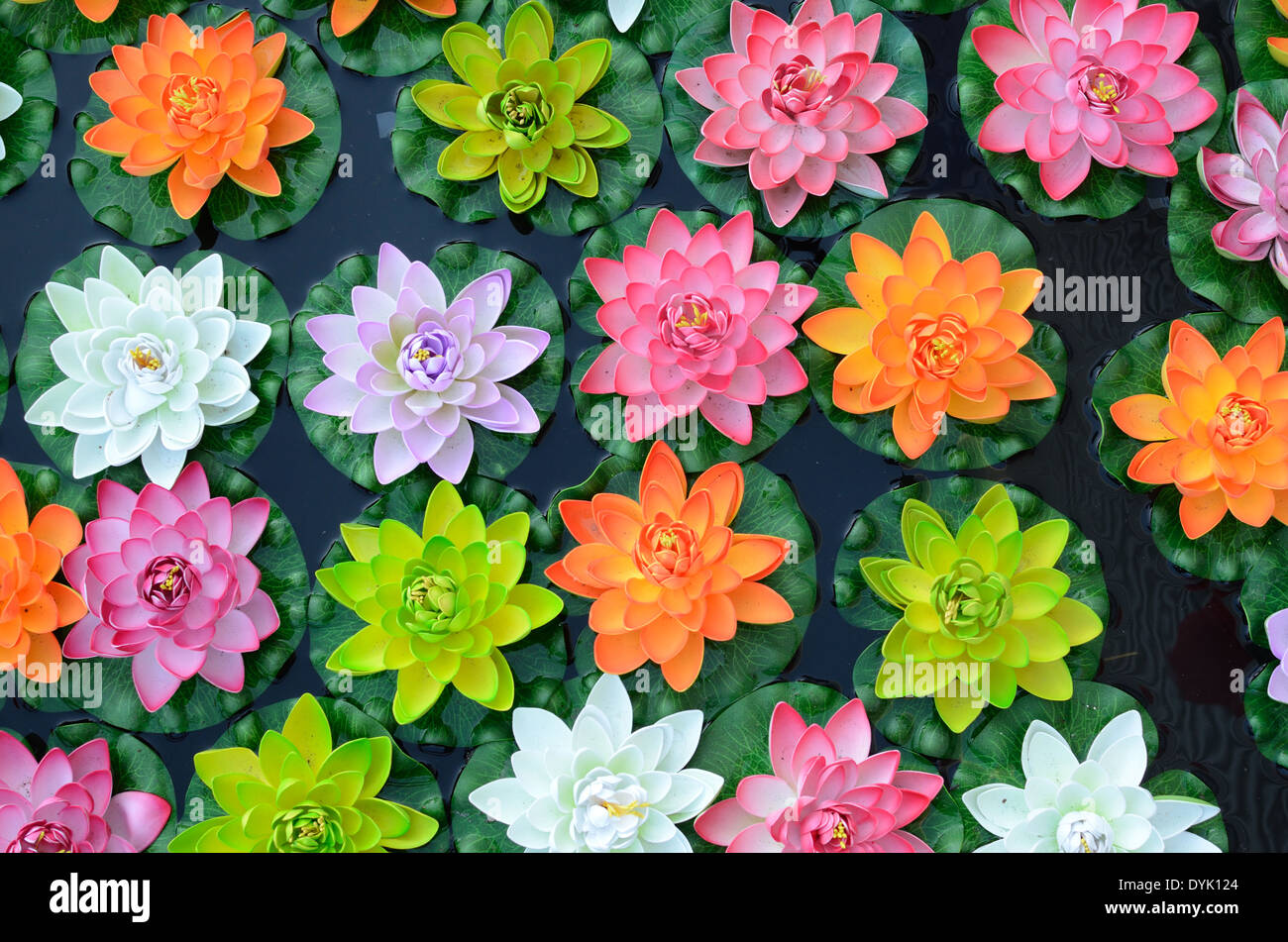 Colourful Blooms Pattern or Colorful Display of Plastic Lotus Flowers or Water Lilies - Stock Image