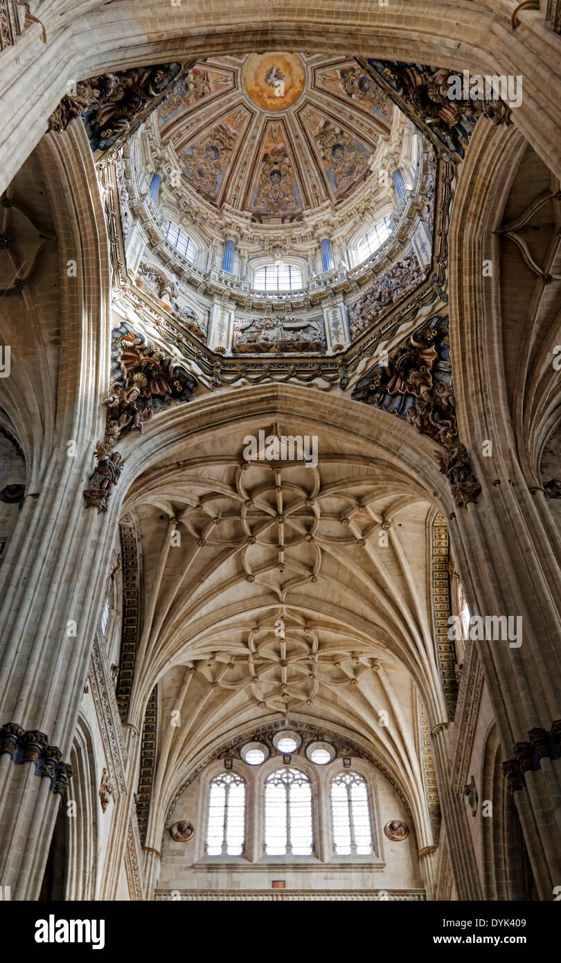 View looking upwards into the highly decorated dome of the New Cathedral, Salamanca, Castilla y León, Spain. - Stock Image
