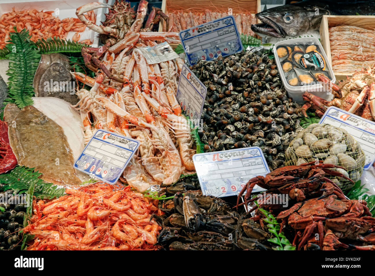Fresh fish and seafood for sale at Mercado Central, a covered market, Plaza del Mercado, Salamanca, Castilla y León, Stock Photo