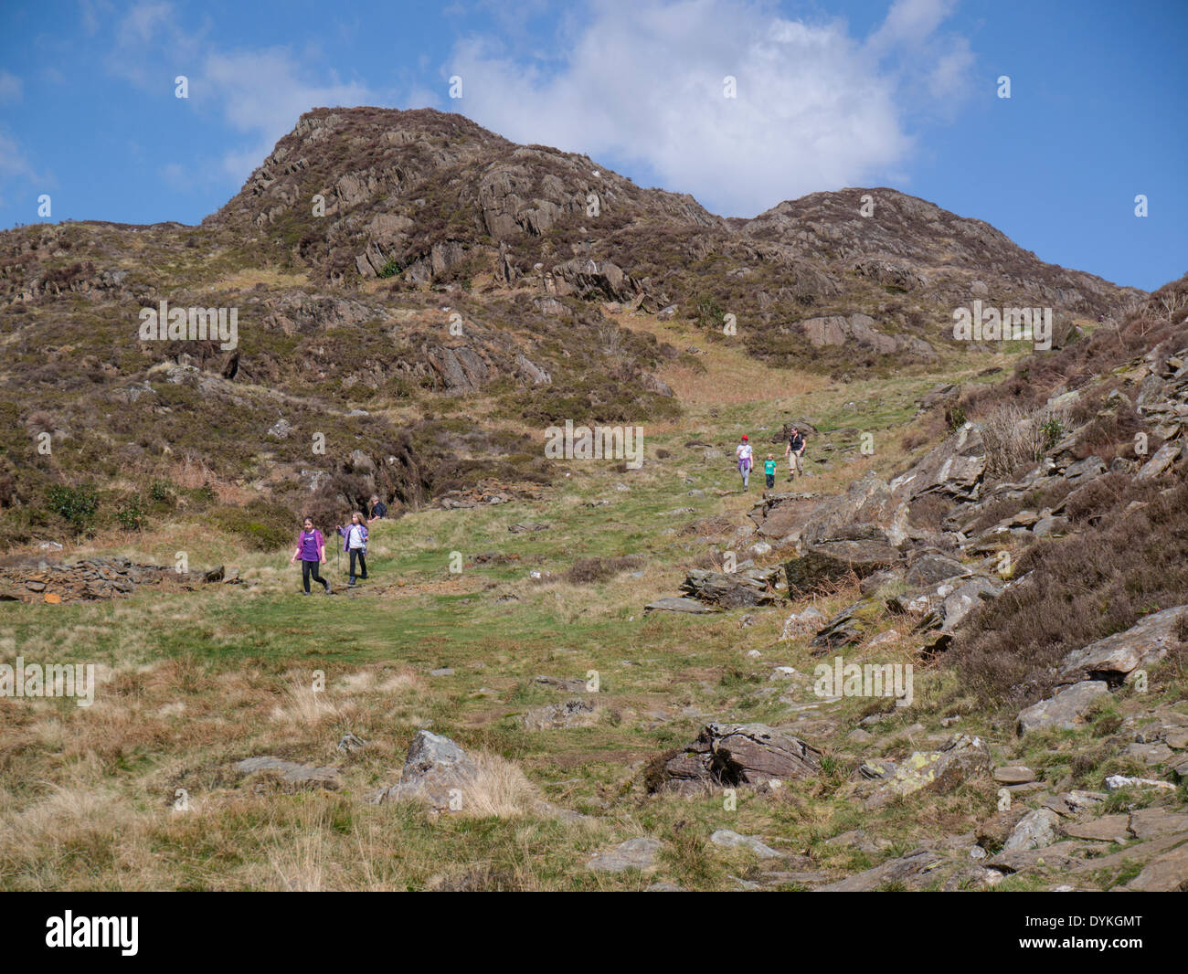 Family Group walking down Cwm Bychan in Snowdonia National Park a very popular walking area with many great public footpaths - Stock Image