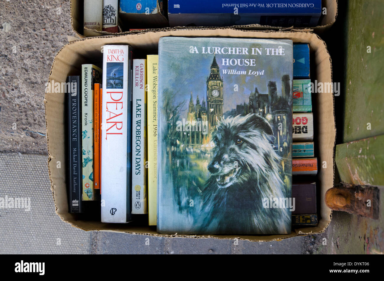'A Lurcher in the House' by William Loyd in a box of books outside a secondhand bookshop in Edinburgh. - Stock Image