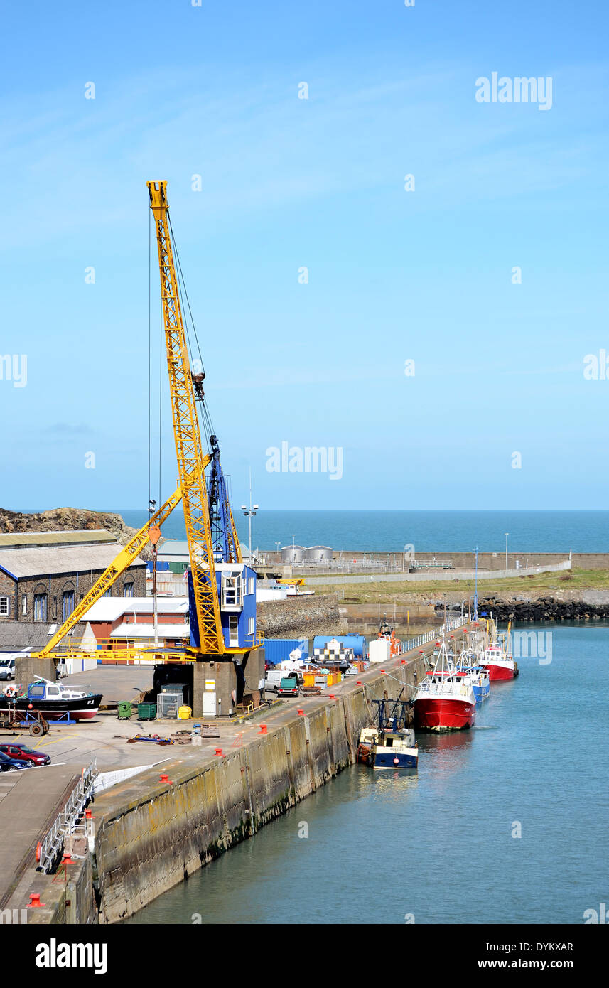 Fishguard ferry port, Pembrokeshire, Wales, UK - Stock Image