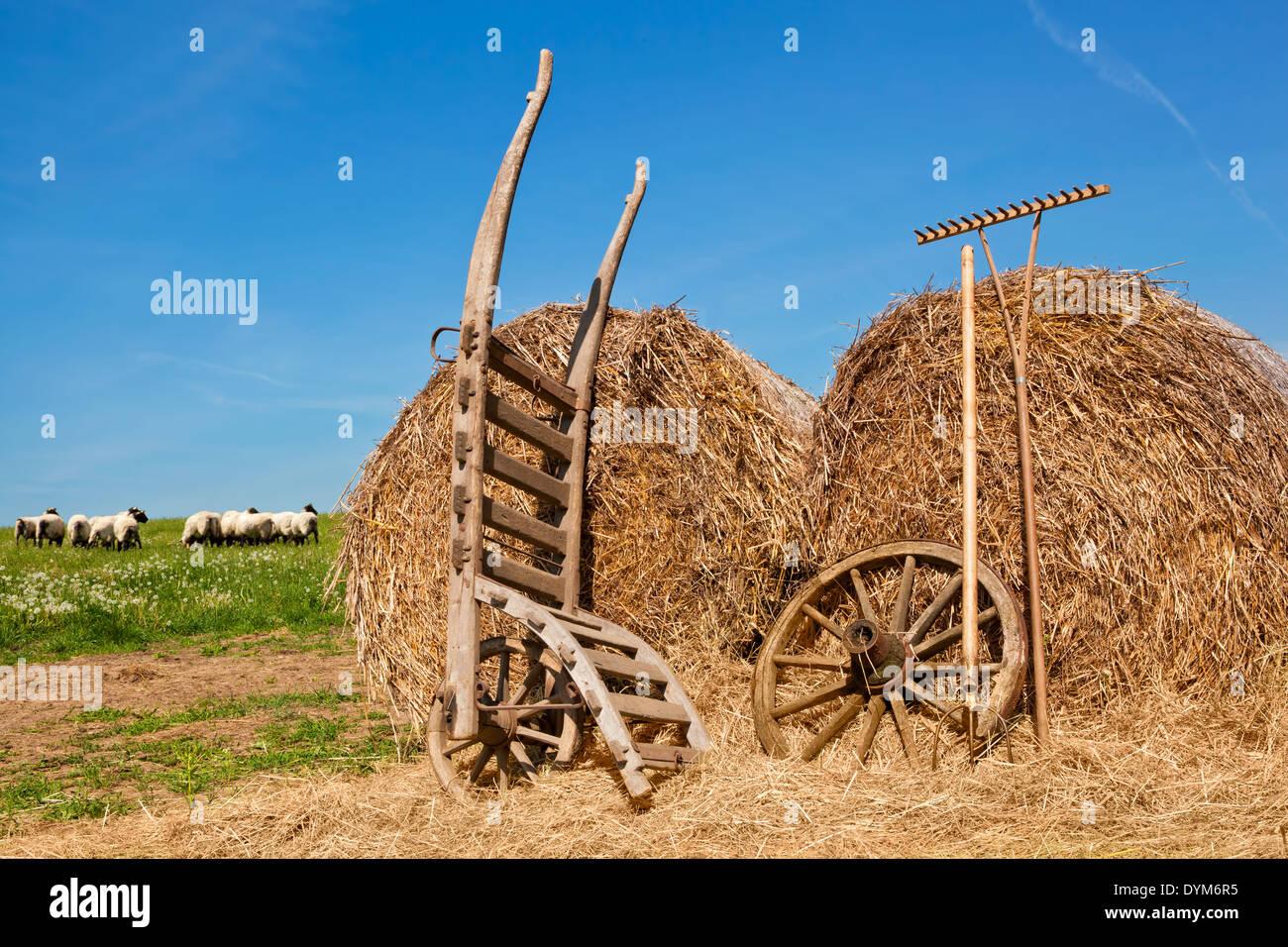 Antique Wooden Wheelbarrow Stock Photos & Antique Wooden Wheelbarrow