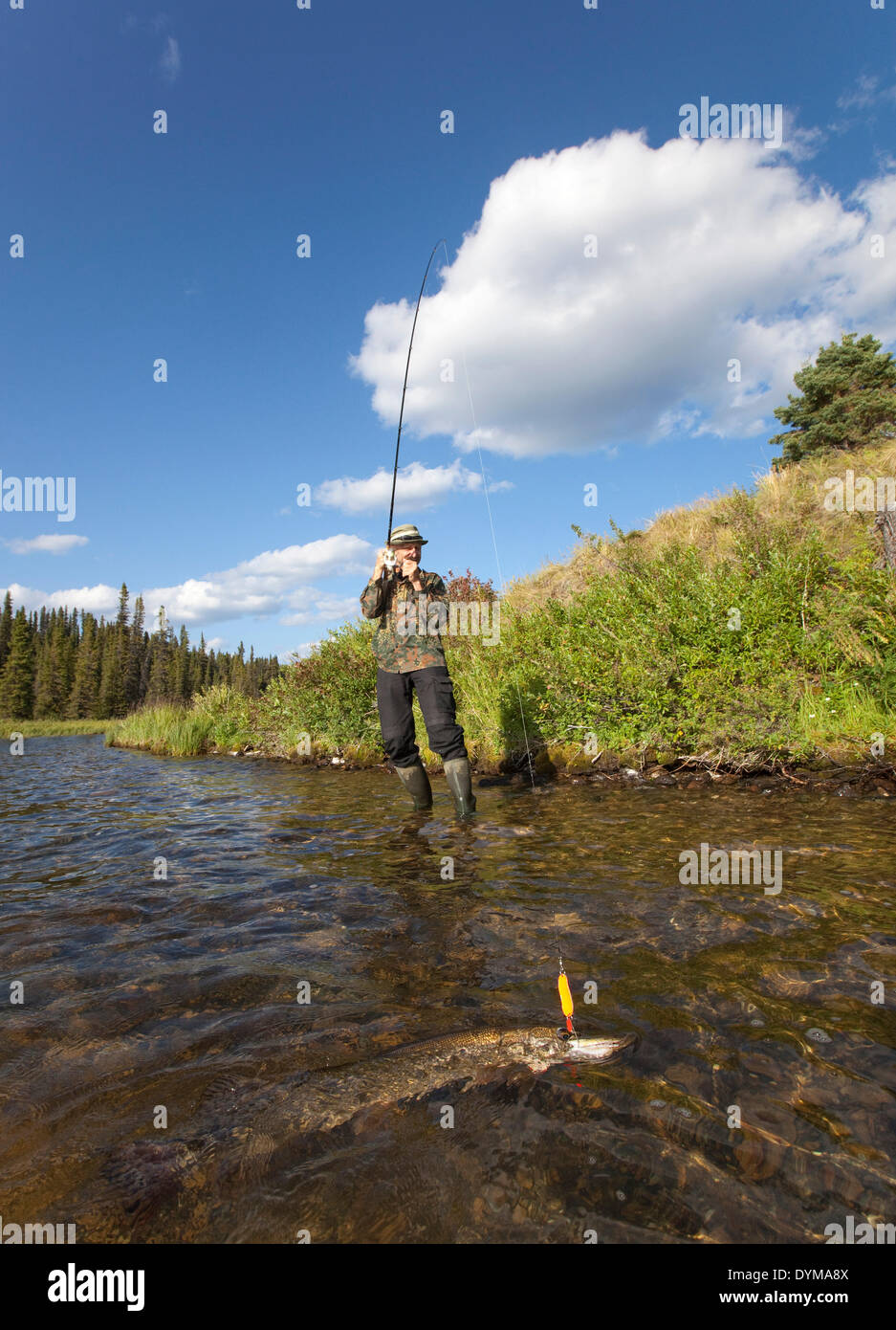 Man spin fishing for Northern Pike (Esox lucius), Caribou Lakes, head waters of the Liard River, Yukon Territory, Stock Photo
