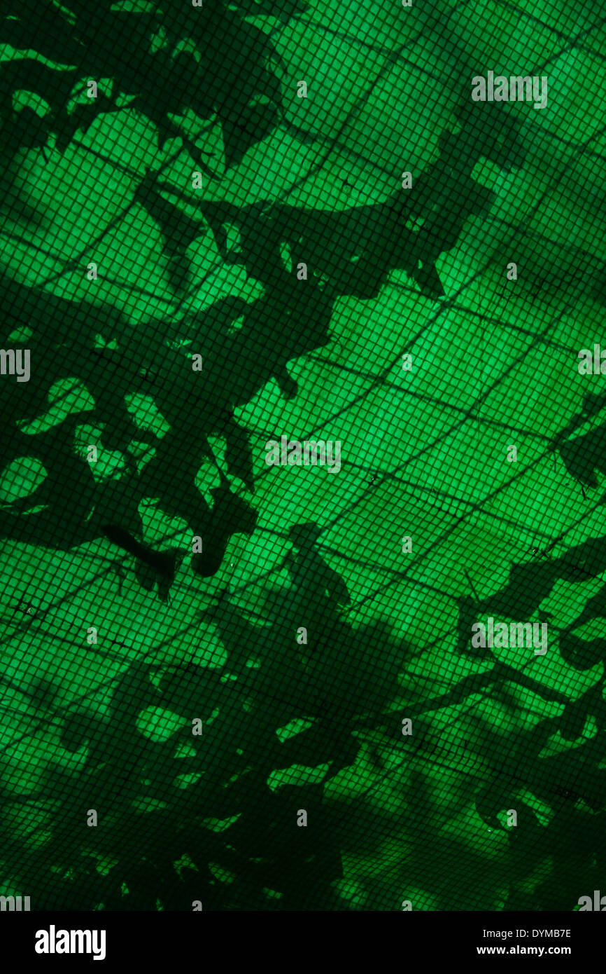 Tarpaulin roof material with sun outlining camouflage netting. - Stock Image