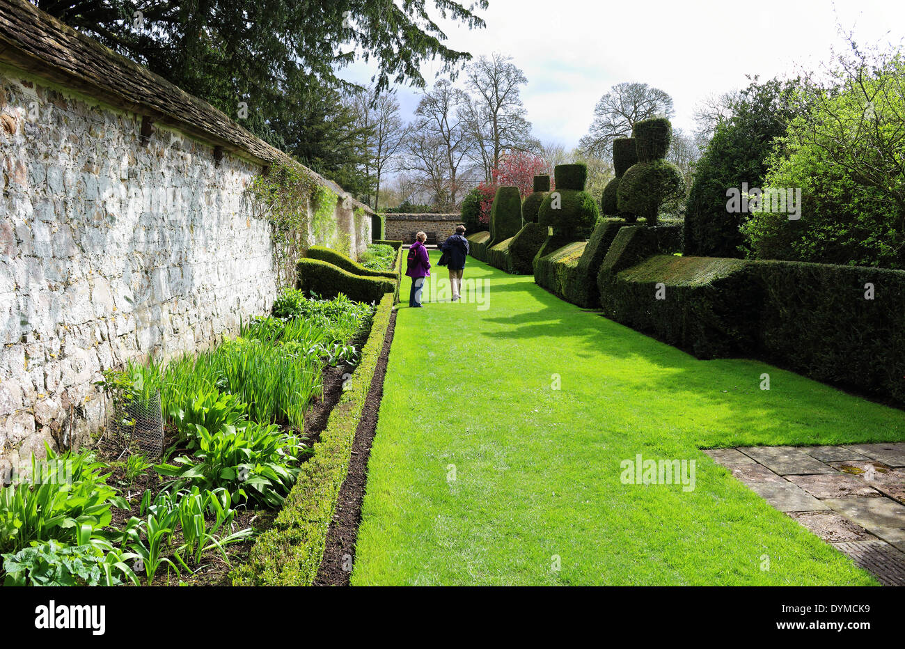 A Formal English Walled Garden With Flower Borders And Topiary Hedge