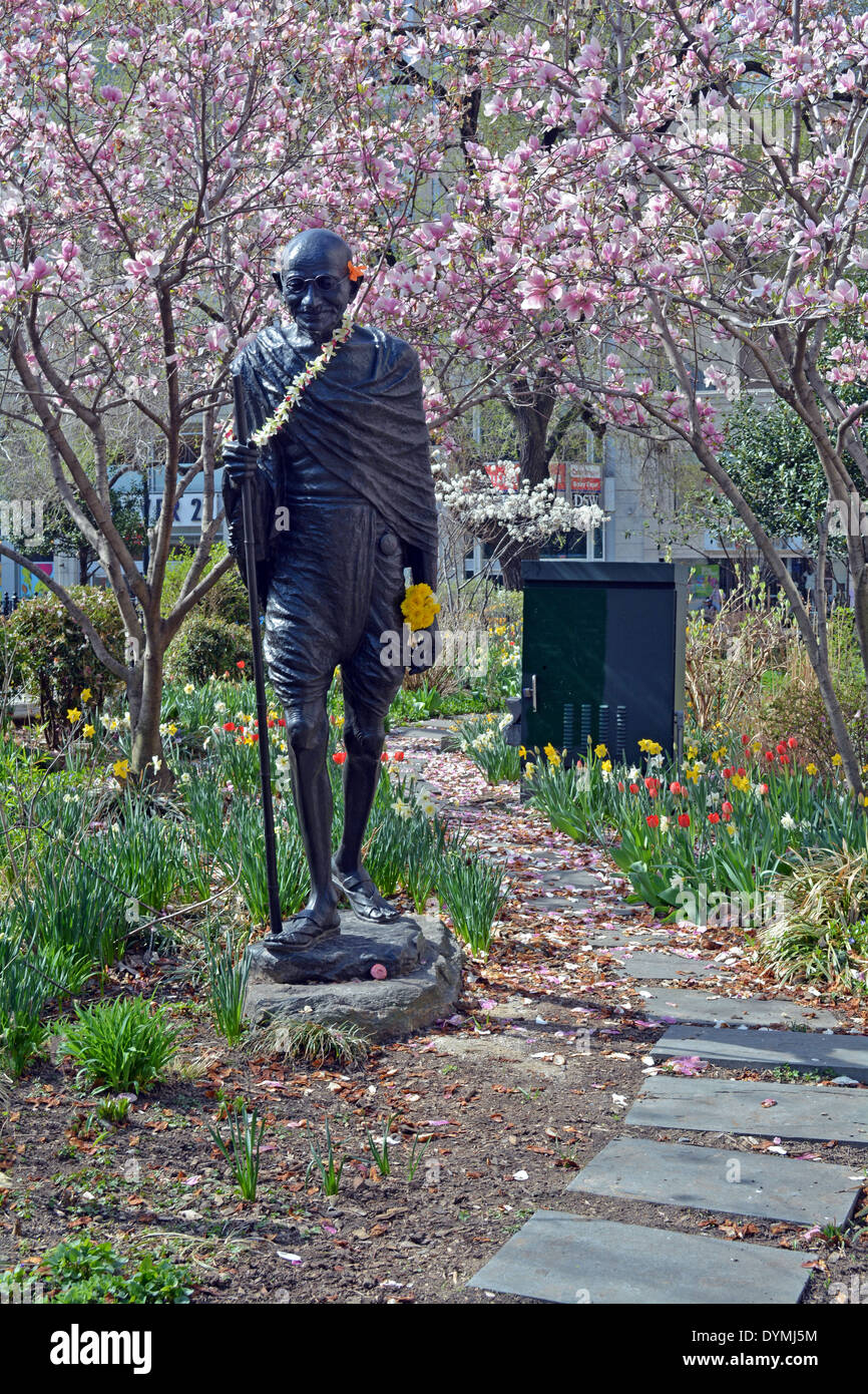 A statue of Mohandas Gandhi in Union Square Park in New York photographed in the Spring with tulips and magnolias. - Stock Image