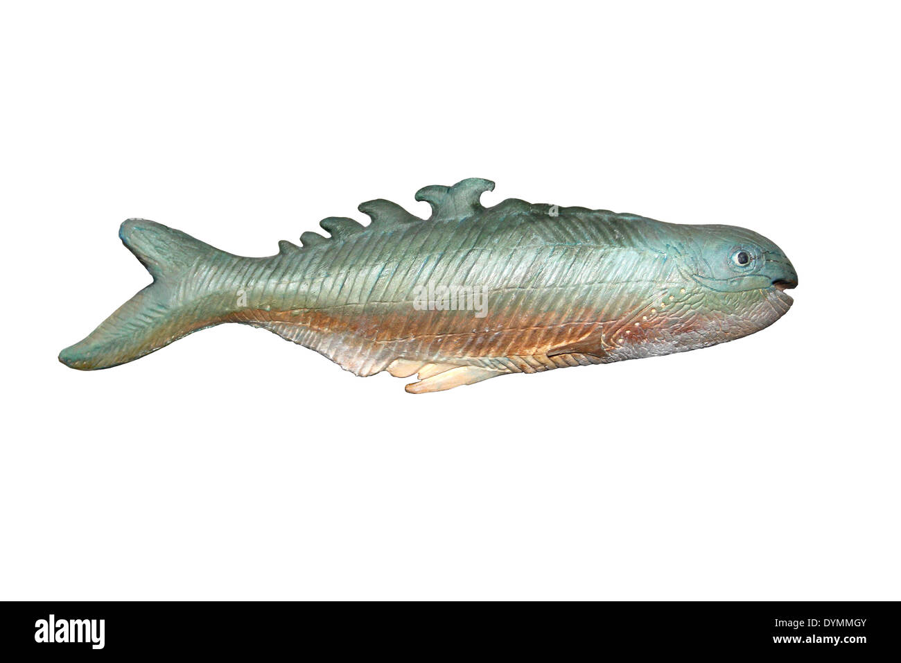 Model Of Jawless Fish Birkenia elegans - an extinct anaspid fish from the Late Silurian to the Early Devonian of Europe - Stock Image