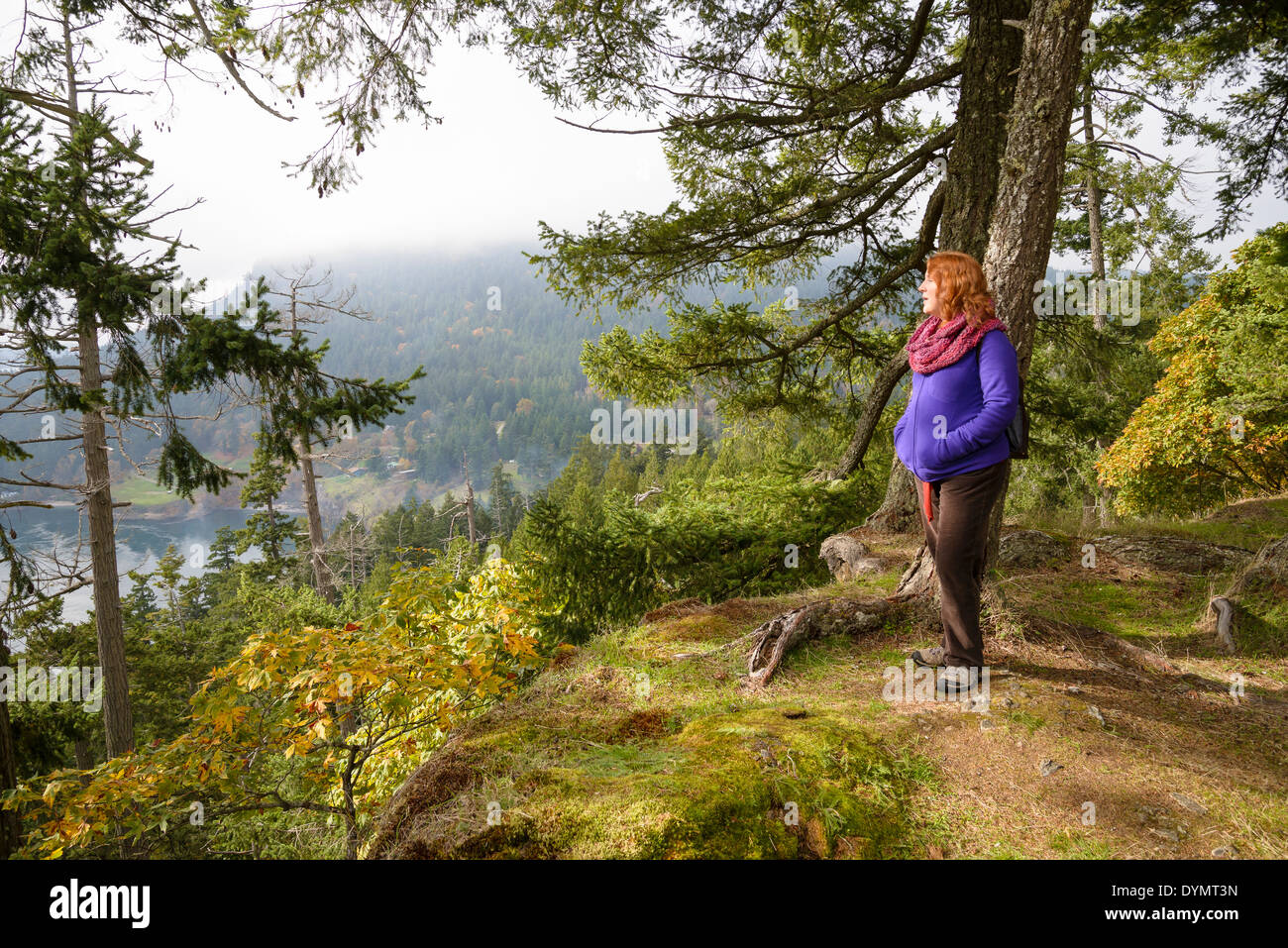 Bluffs Park, Galiano Island. British Columbia, Canada - Stock Image