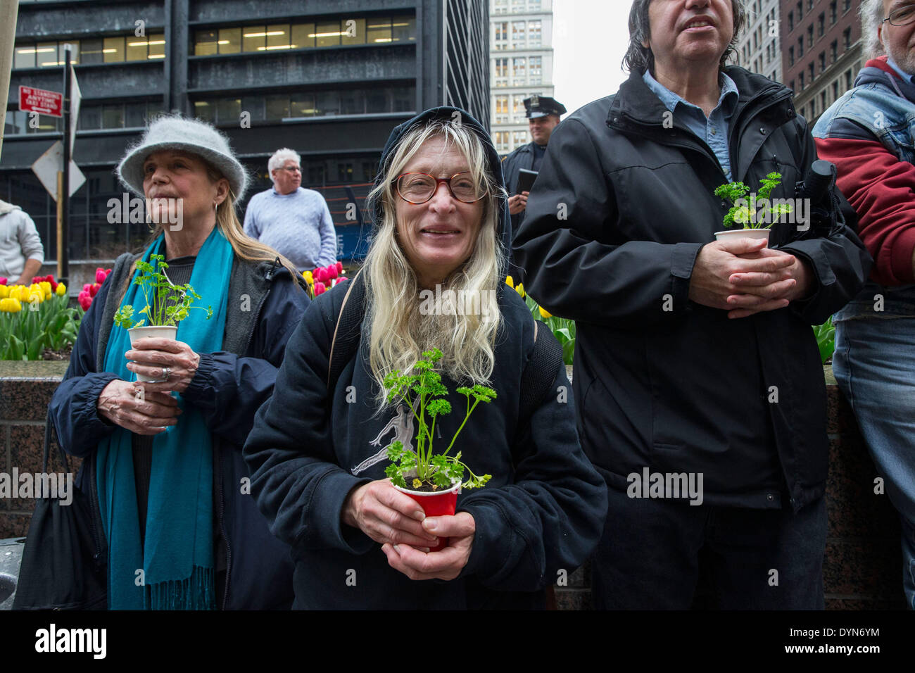 New York, USA. 22nd April 2014. Environmental activists attend a protest in Zuccotti Park on Earth Day. Protesters brought plants, and chanted ' System Change Not Climate Change, ' taking aim at large corporations who do not adhere to environmental concerns. These protesters also expressed that capatilisim exploitation of nature is the flip side to exploitation of human labor. Credit:  Scott Houston/Alamy Live News - Stock Image