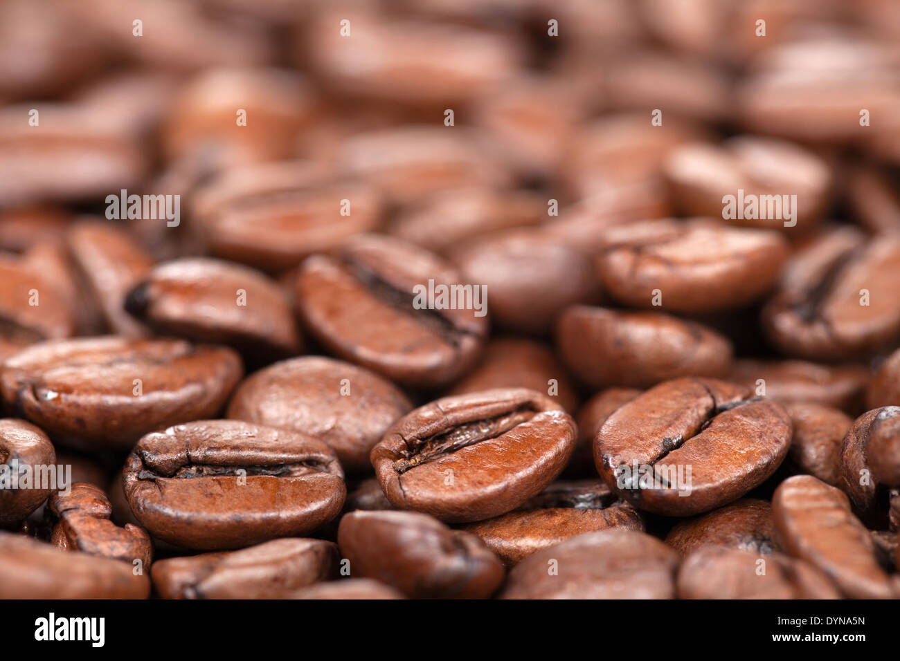 Macro shot of coffee beans with shallow depth of field and plenty of copy space - Stock Image