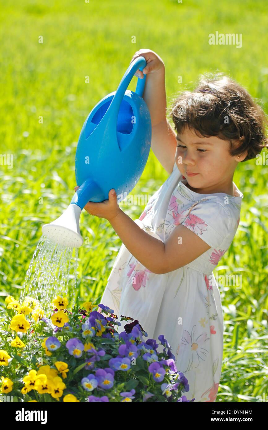 Little girl. 3 4 years old. Watering pansies. - Stock Image