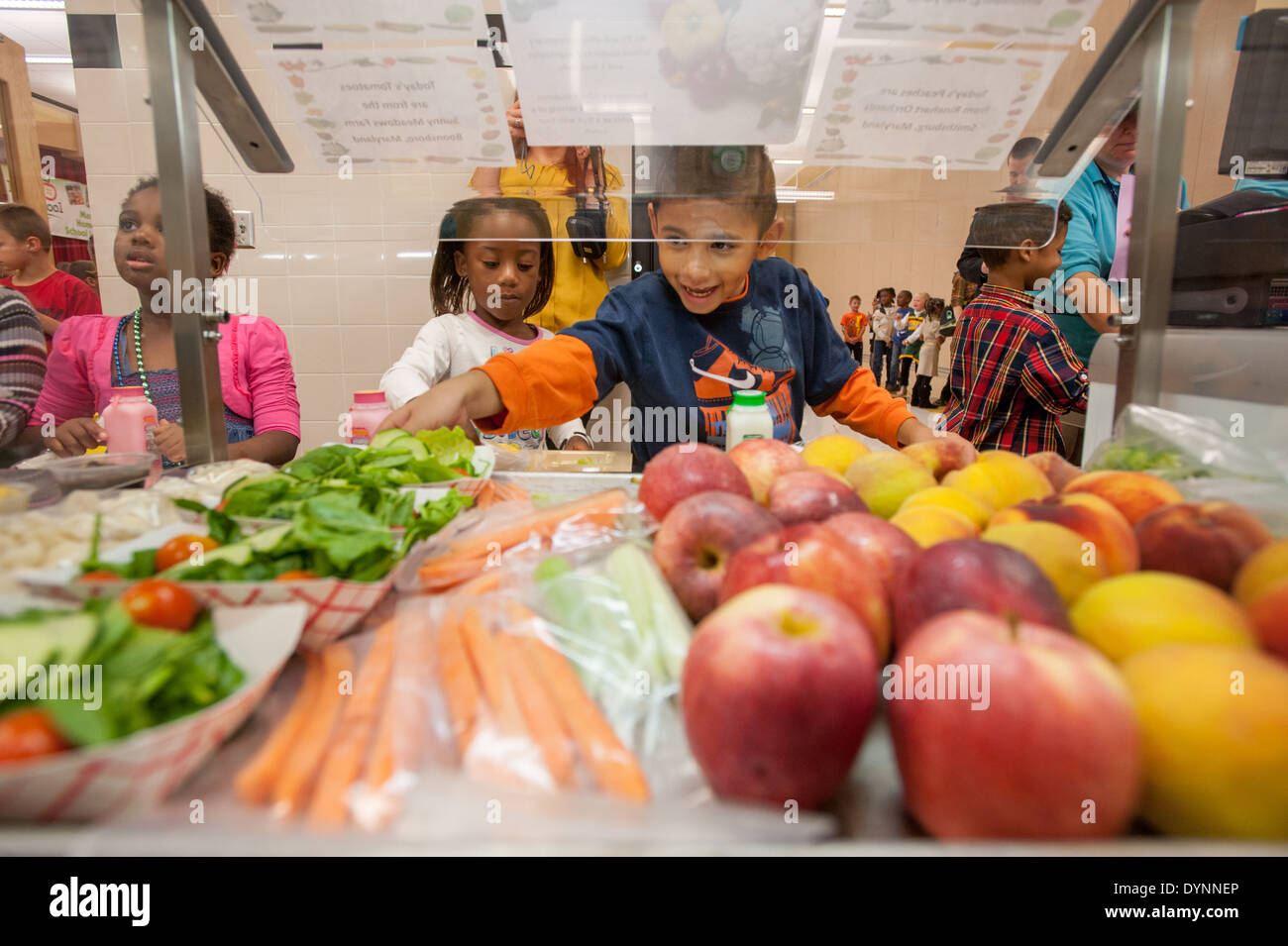 healthy nutrition for elementary school students Healthy nutrition for elementary school students healthy kids learn better healthy kids go to school, pay attention, can have better test scores and are more likely to succeed.