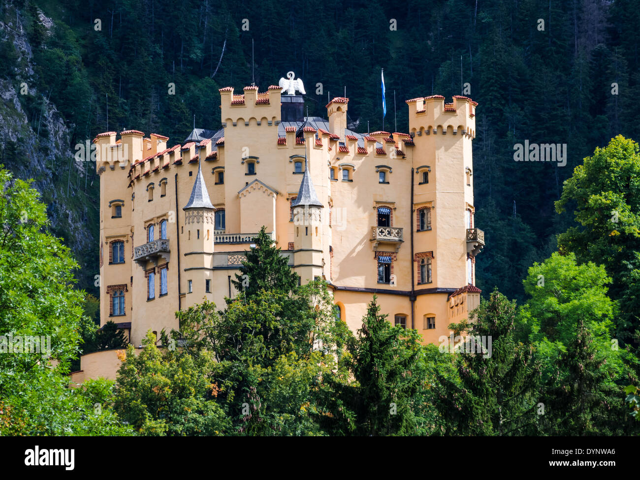 Hohenschwangau Castle in Germany: photo with description 32