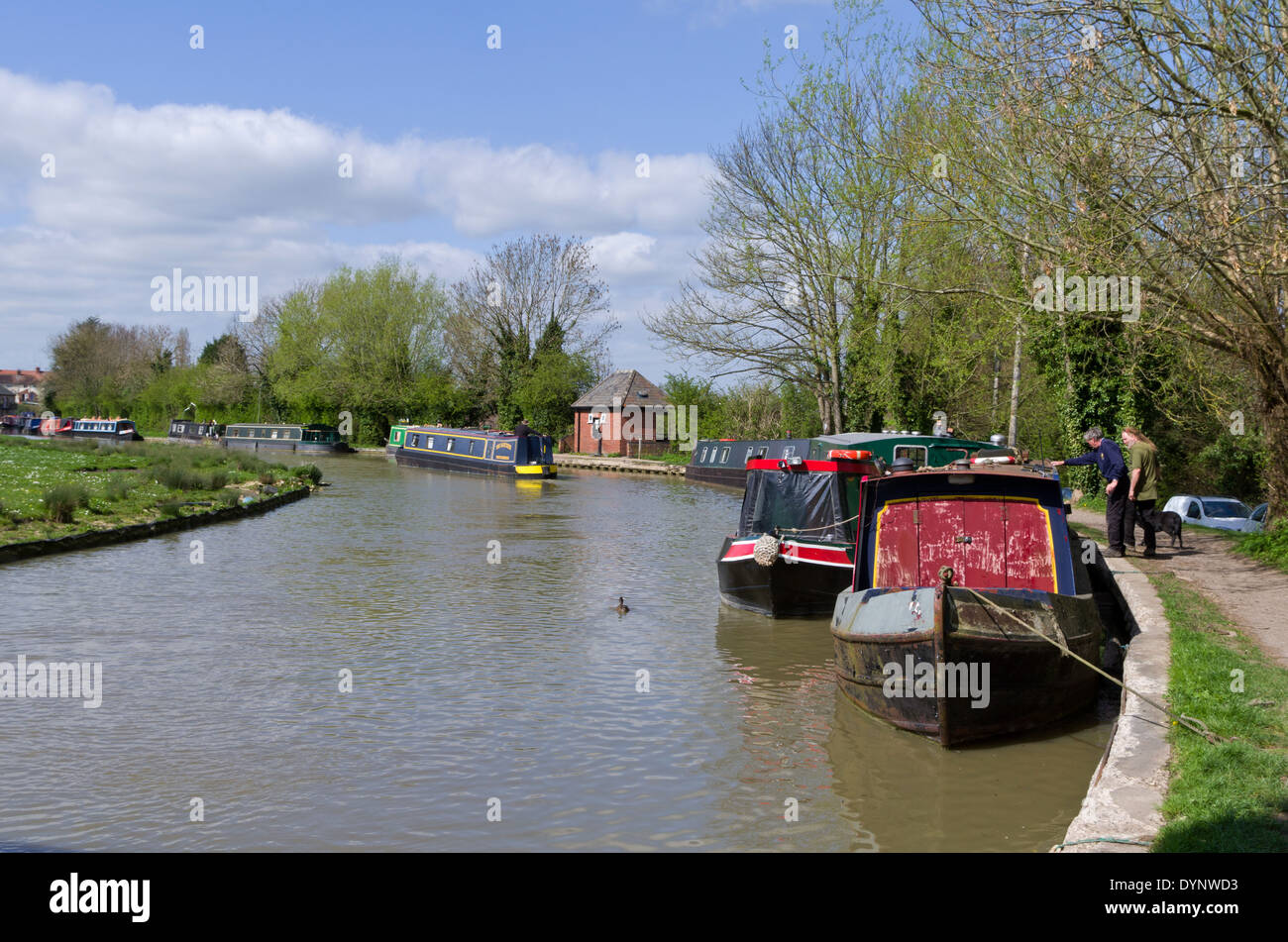 Narrowboats moored on the Grand Union Canal, Cosgrove, Northamptonshire Stock Photo