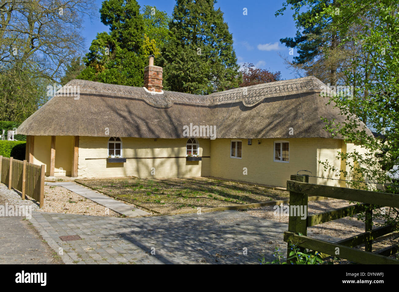 Newly renovated thatched cottage in the village of Cosgrove, Northamptonshire, UK - Stock Image