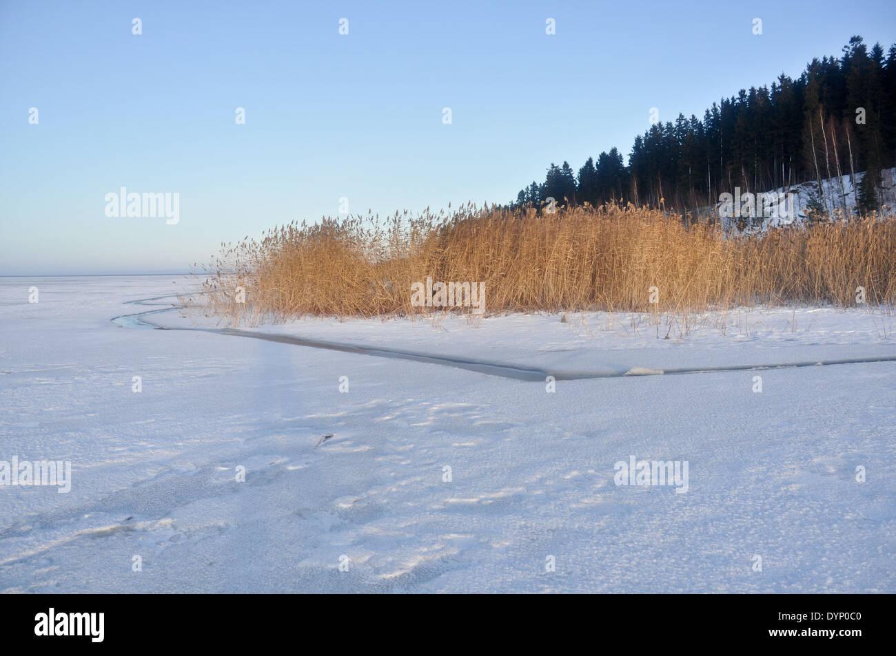 The Pskov lake, the island Belov. Winter landscape. January 2013. Stock Photo