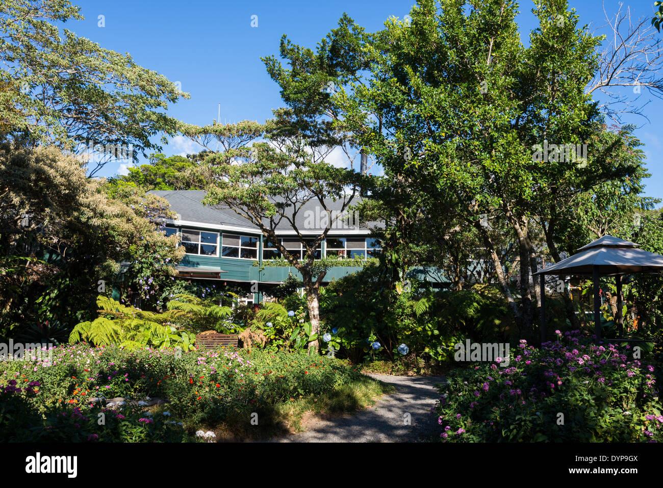 Garden Of The Monteverde Lodge, Costa Rica.