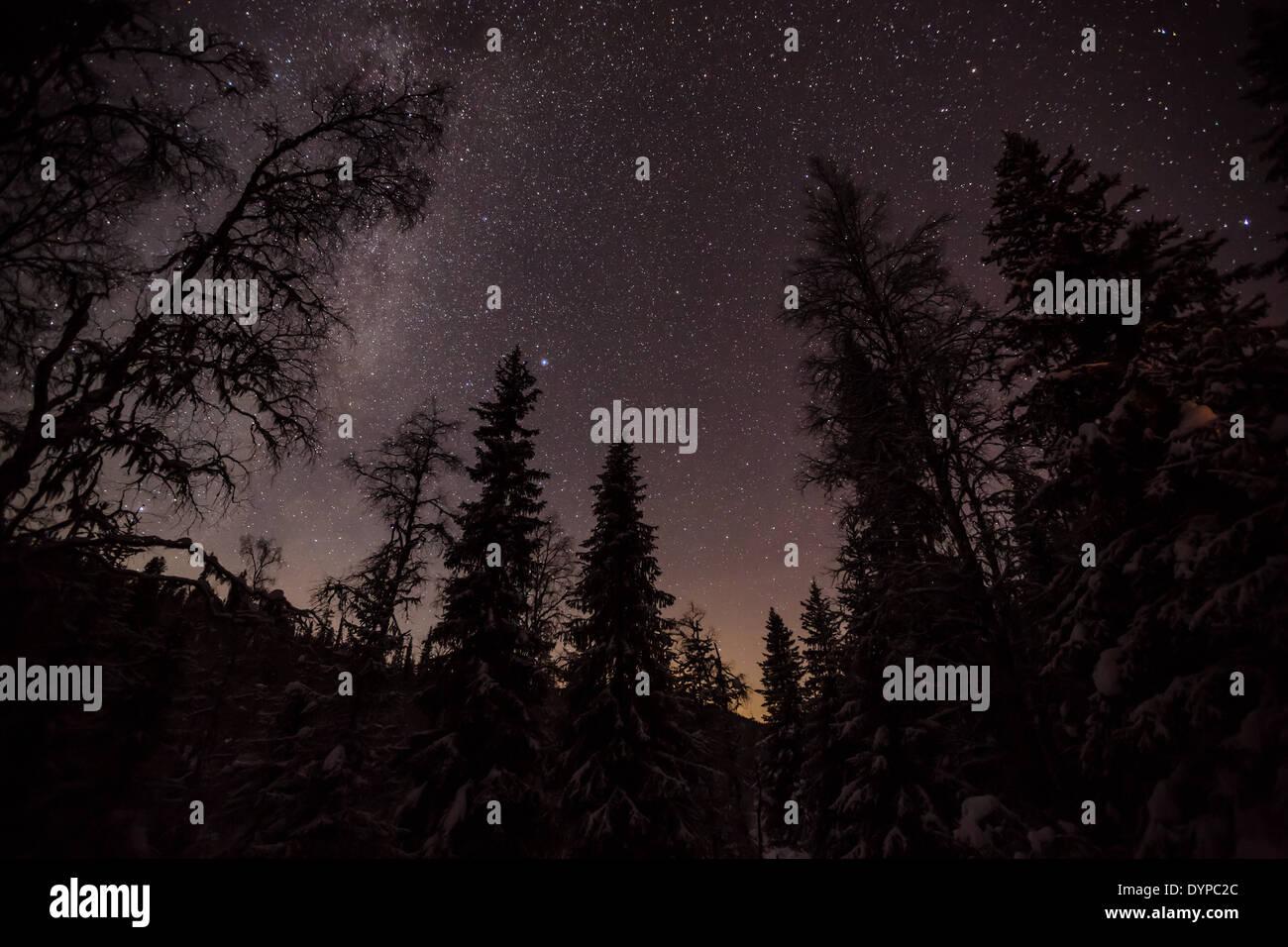 Starry night sky in Korouoma, Posio, Finland, EU - Stock Image