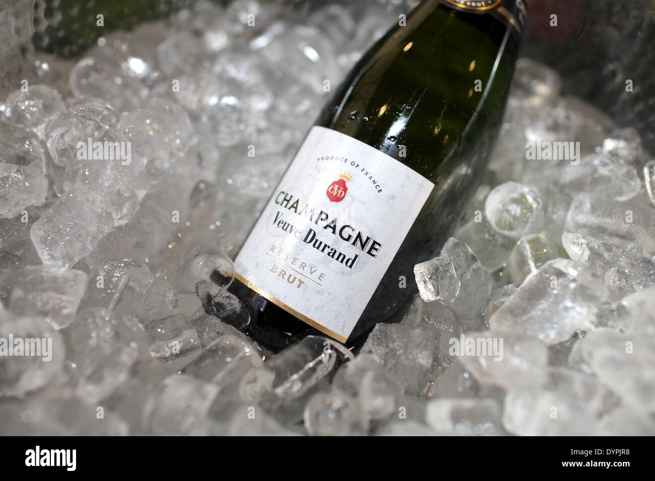 A bottle of champagne chilling on ice - Stock Image