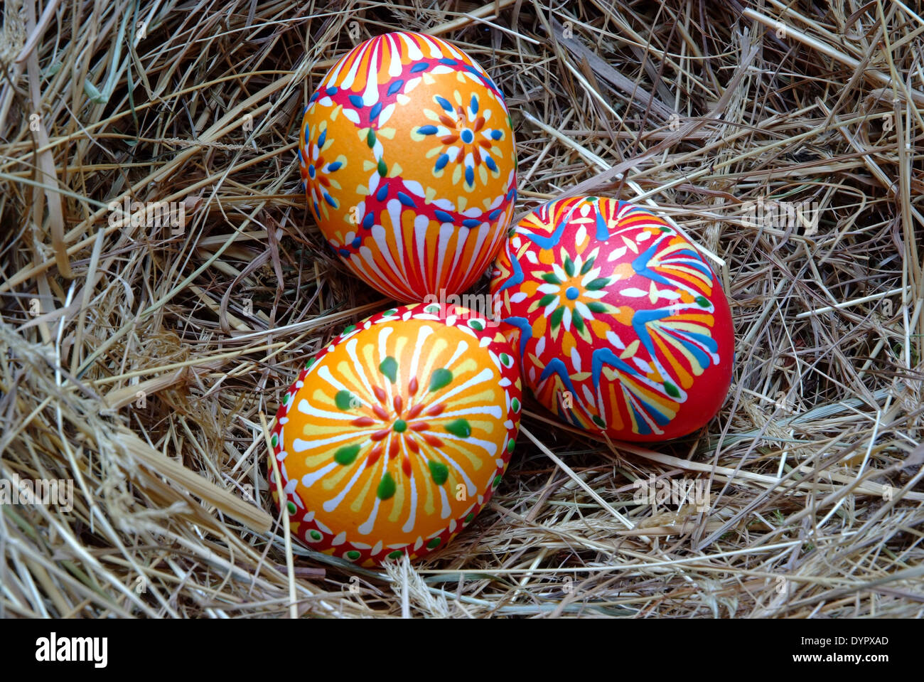handpainted eastereggs in a nest of straw - Stock Image
