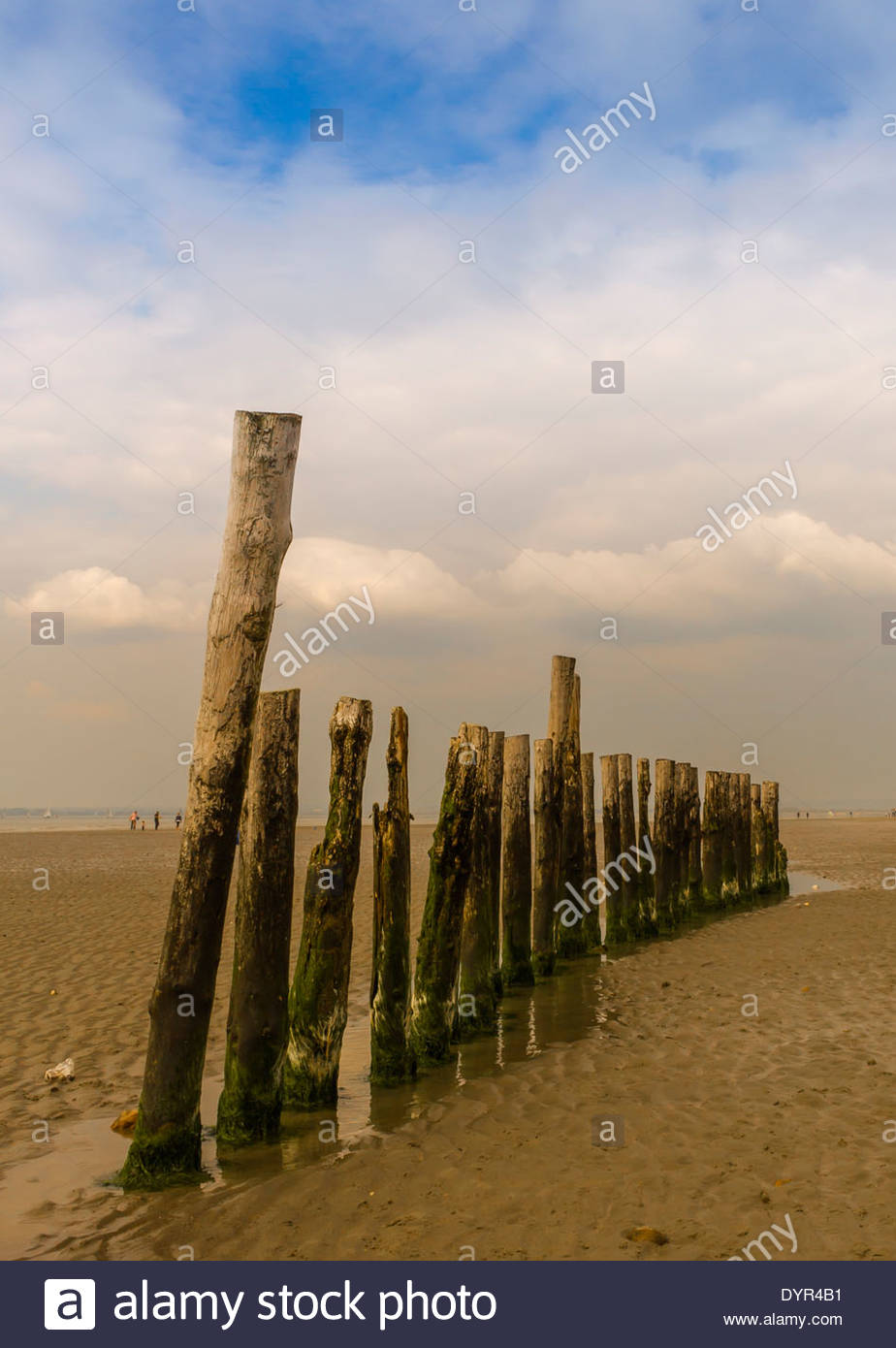 The mid beach breakwater at West Wittering, West Sussex. Taken on Easter Monday 2014 Stock Photo