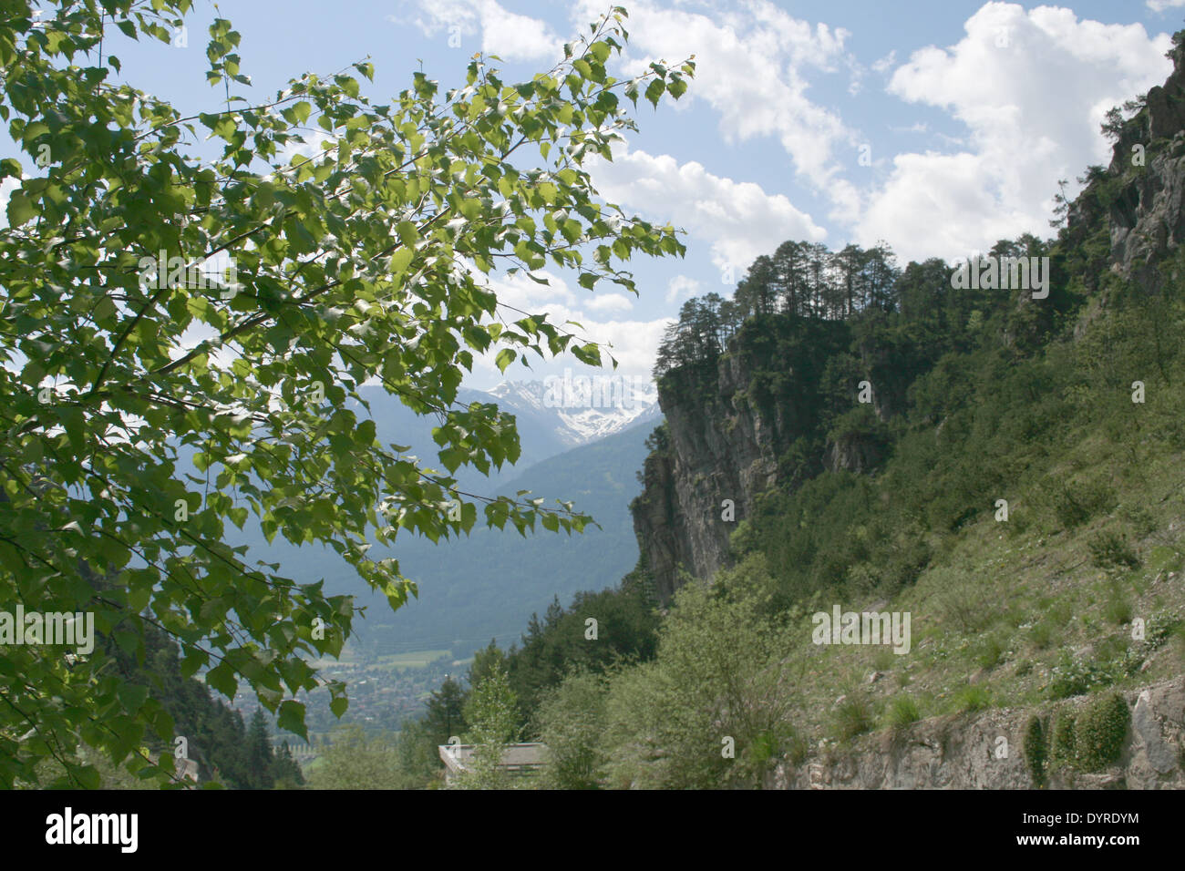 Look about the valley of the Inn, In the foreground a birch branch - Stock Image